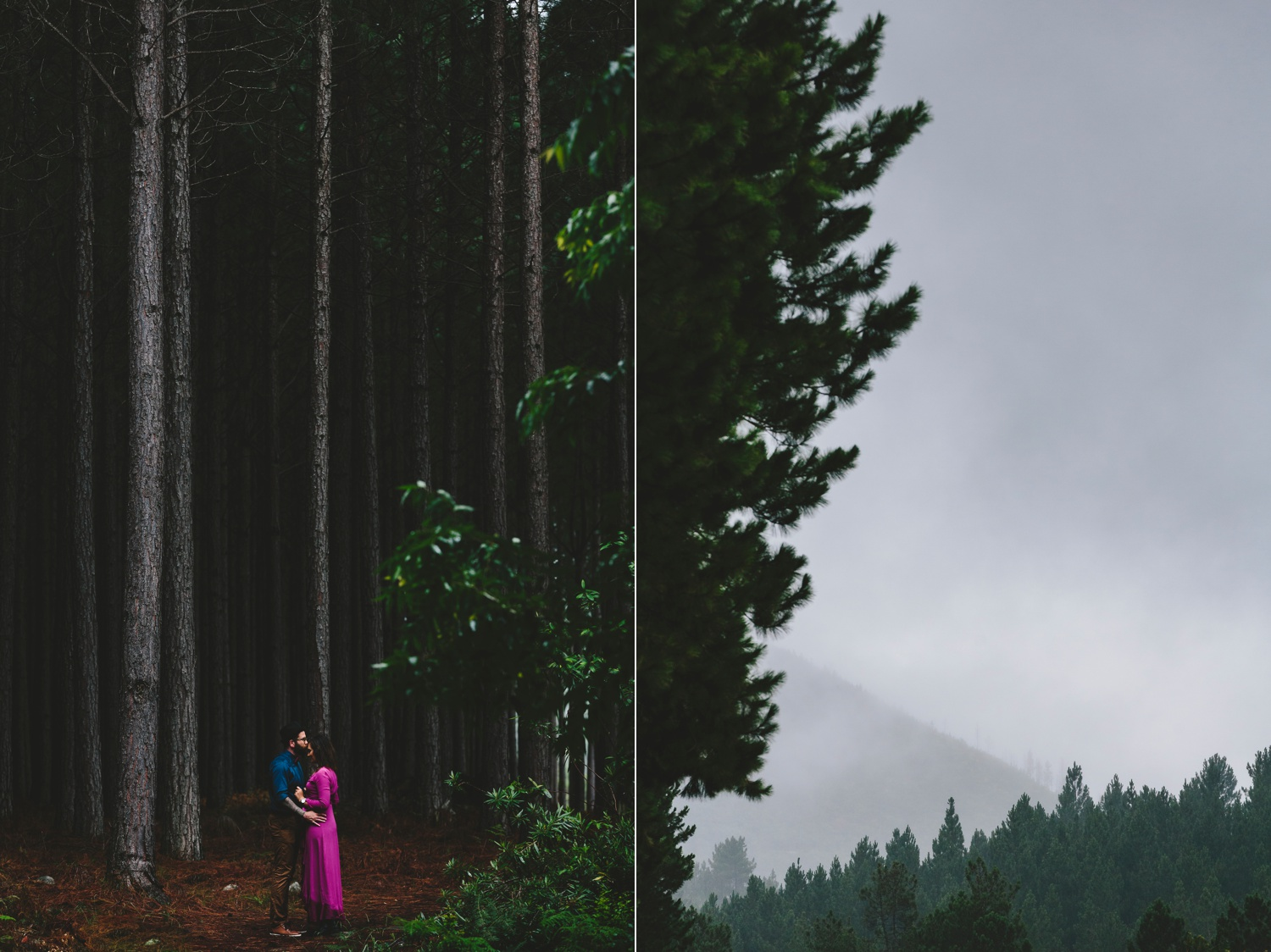 western_cape_tsitsikamma_storms_river_forest_ferns_stormy_couple_session_0719.jpg