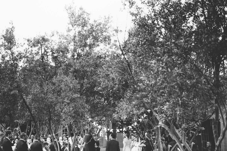 italian-wedding-city-urban-wedding-photographer-south-africa35.jpg