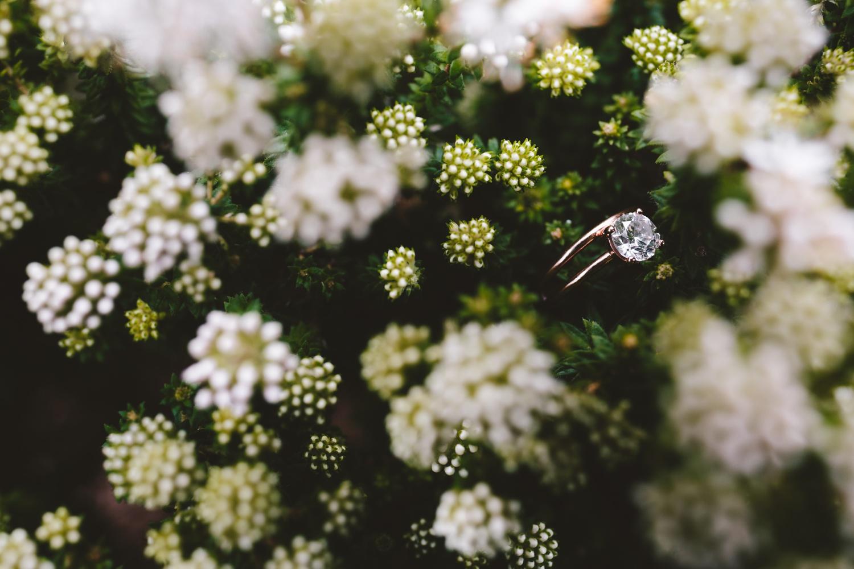 cathryn_warwick_wearecharlieray_hopewell_conservation_eastern_cape_wedding_0000.jpg