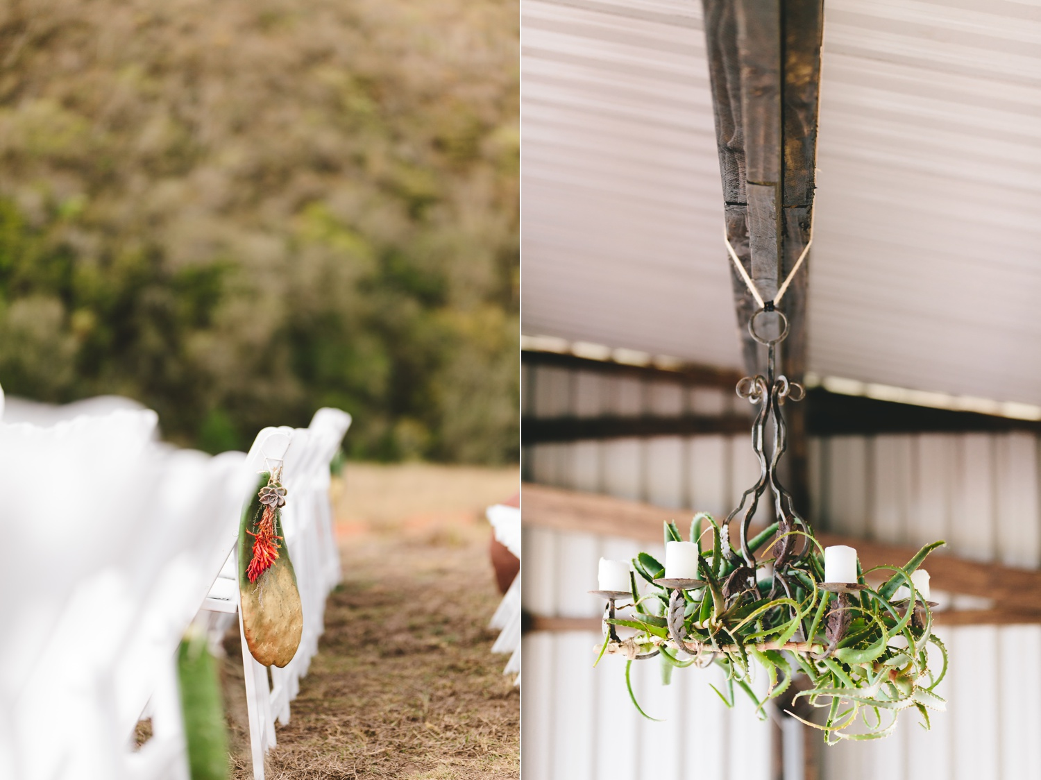 cathryn_warwick_wearecharlieray_hopewell_conservation_eastern_cape_wedding_0055.jpg