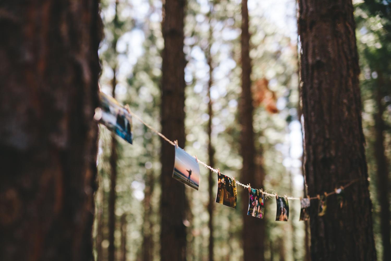 wearecharlieray_lauren_rollie_runaway_romance_rebecca_misty_mountain_titsikamma_garden_route_ferns_forest_storms_river_0028.jpg