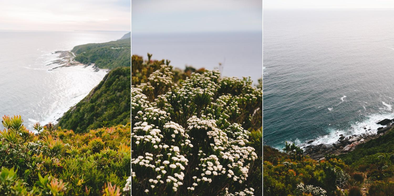 wearecharlieray_lauren_rollie_runaway_romance_rebecca_misty_mountain_titsikamma_garden_route_ferns_forest_storms_river_0064.jpg