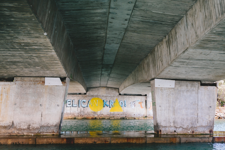 boat-trip-down-port-alfred-river41.jpg