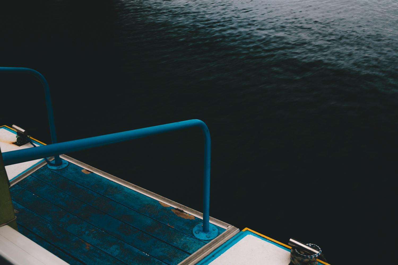 boat-trip-down-port-alfred-river50.jpg