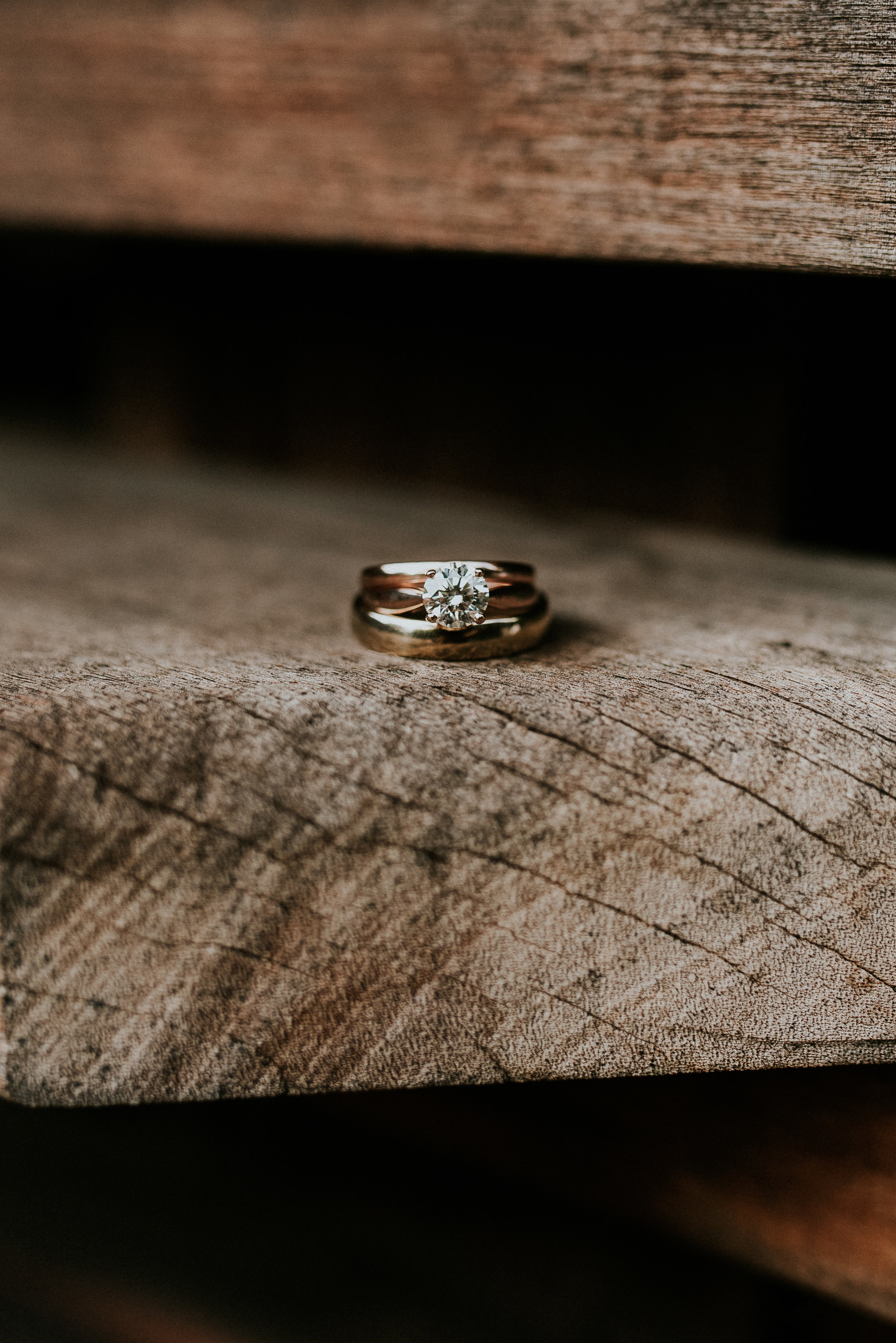 Close-up view of wedding rings