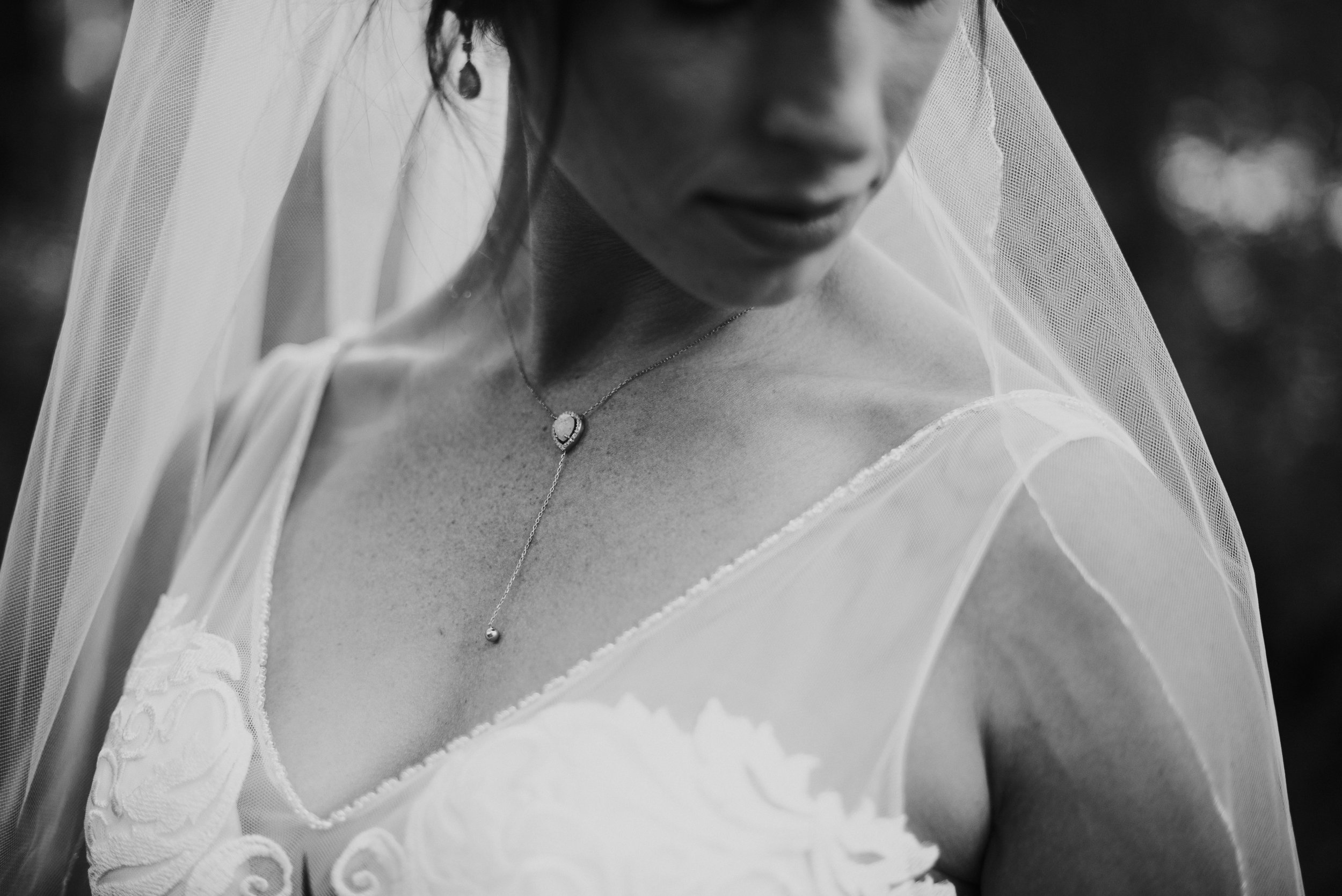 Intimate portrait of bride with veil