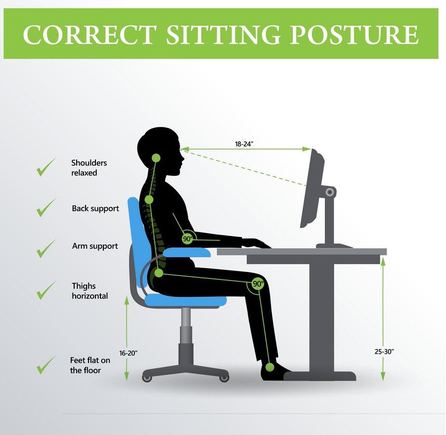 ergonomics-correct-sitting-posture-vector-12589213.jpg