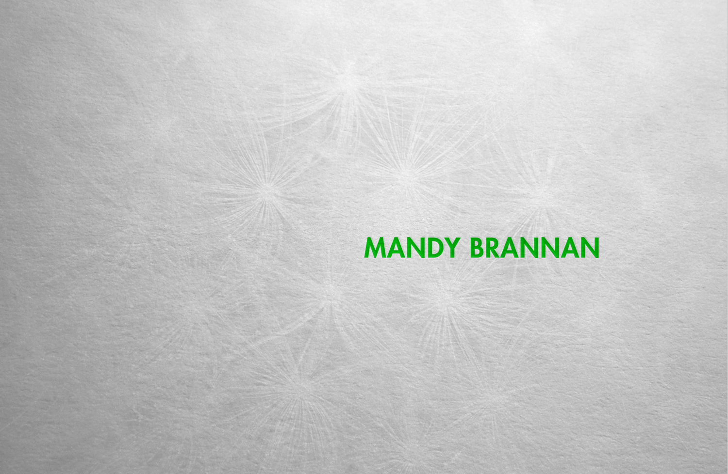 Branding positioning for book artist and educational lecturer, Mandy Brannan.