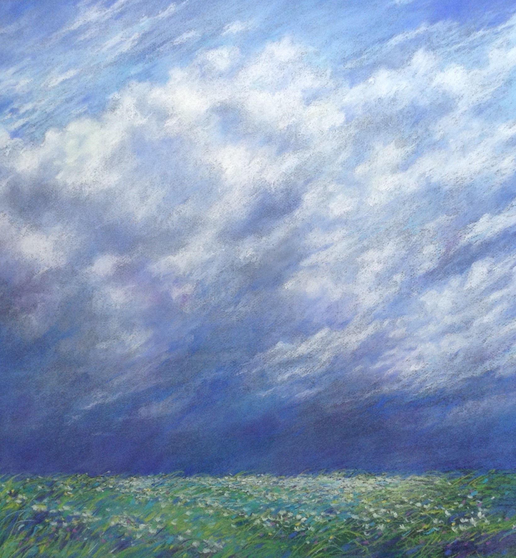 Meadow Sky.jpg