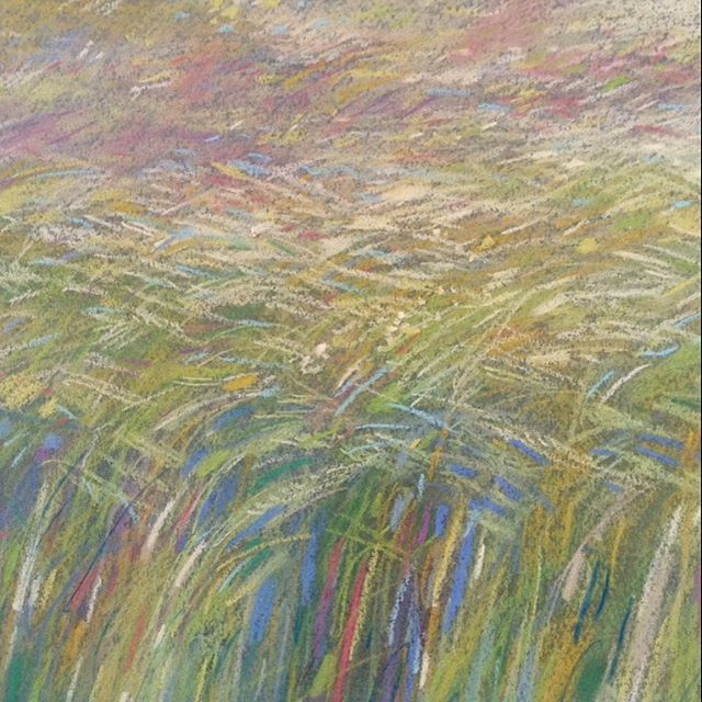 Haze of barley. An English Summer the poet's dream of....sunlight and long evenings and warm breezes through the fields. #haze#meadow#barleyfields#summerart#landscapeartist#englishart#beauty#poetry#beautifulwords