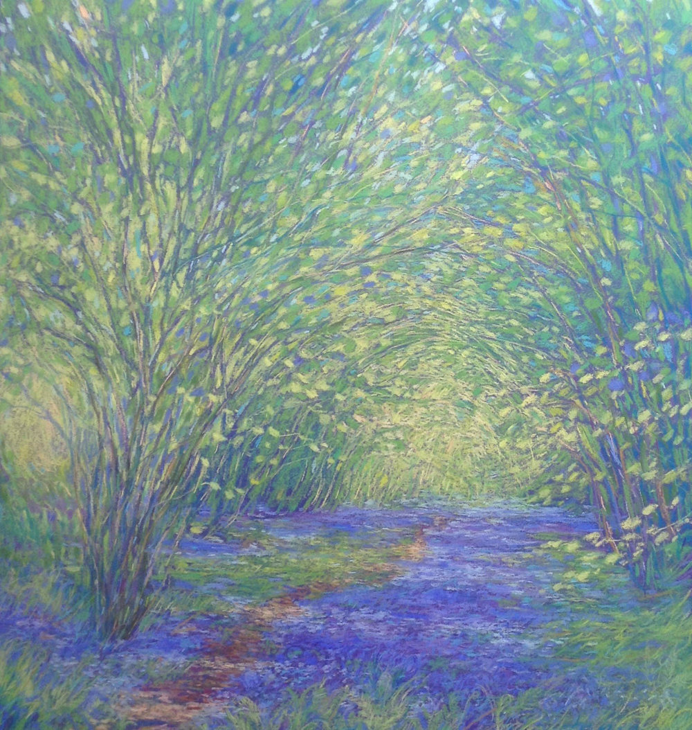 Copy of Bluebell Path £1,200