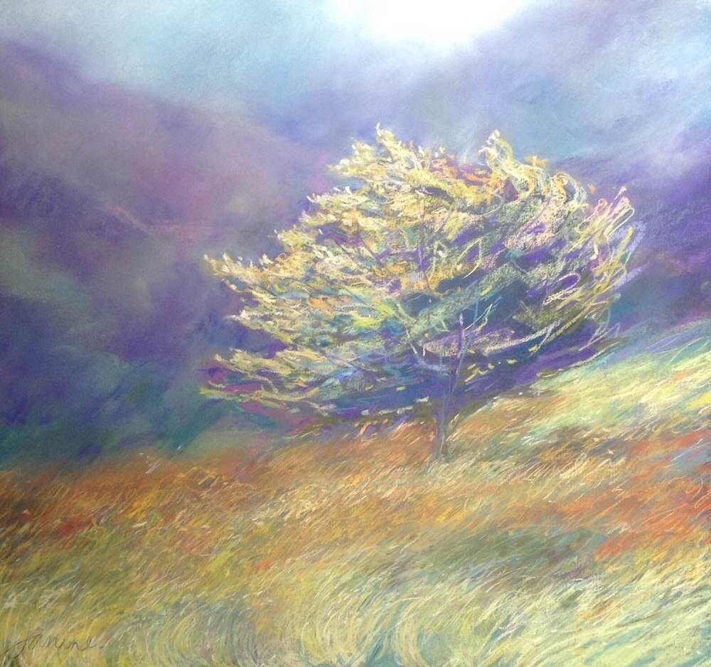 Copy of Evening Tree £950