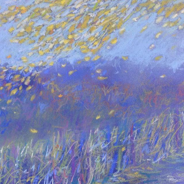 Scattered gold and blue mist  #blue#gold#Autumnleaves#pastel#landscapes#lane#sunlight#peace