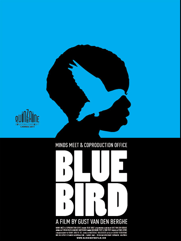 Blue Bird - Composed by Michelino Bisceglia