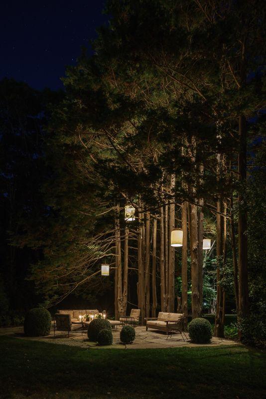 Hanglampen in bomen