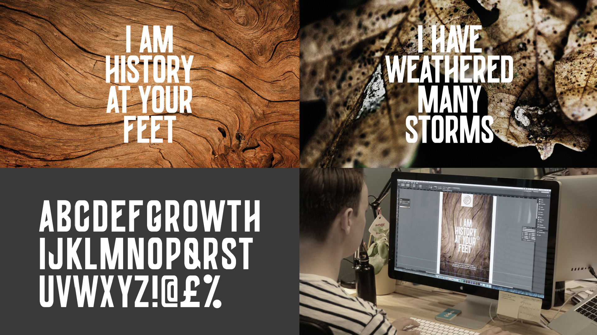 growth_rings_typography