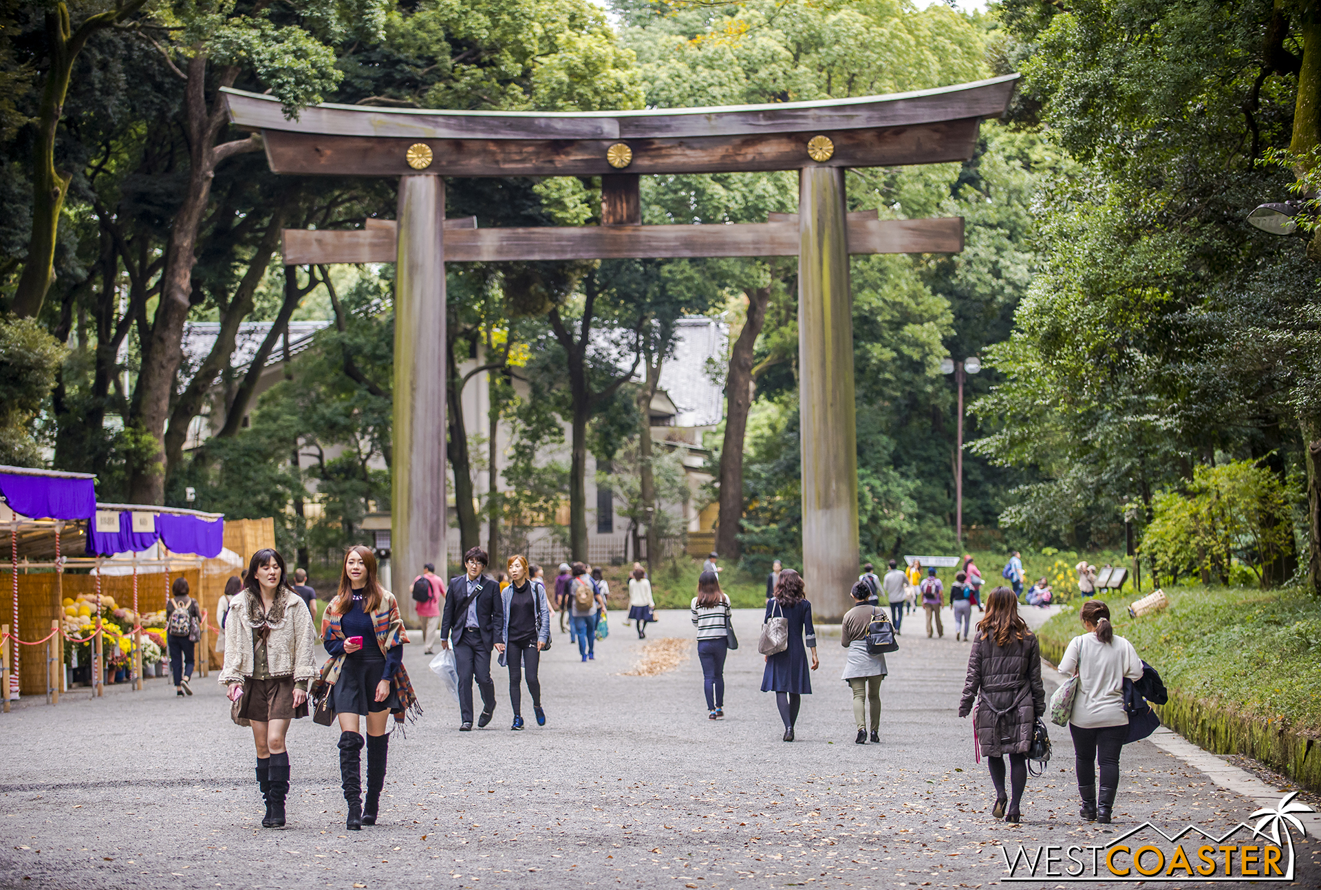 Yoyogi Park is massive and is also where tourists can find Meiji Jingu Shrine.