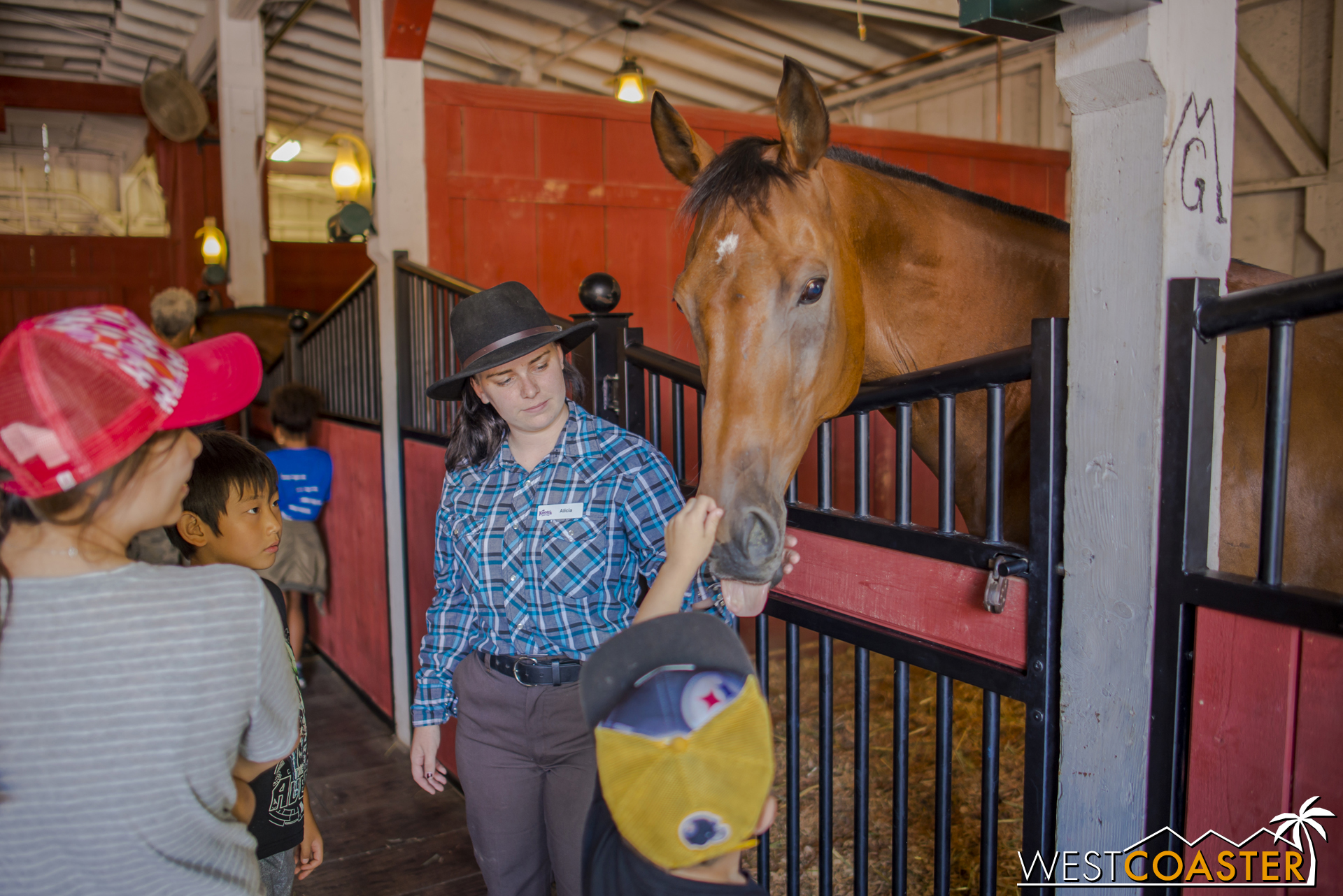 Guests could also pet some beautiful horses.