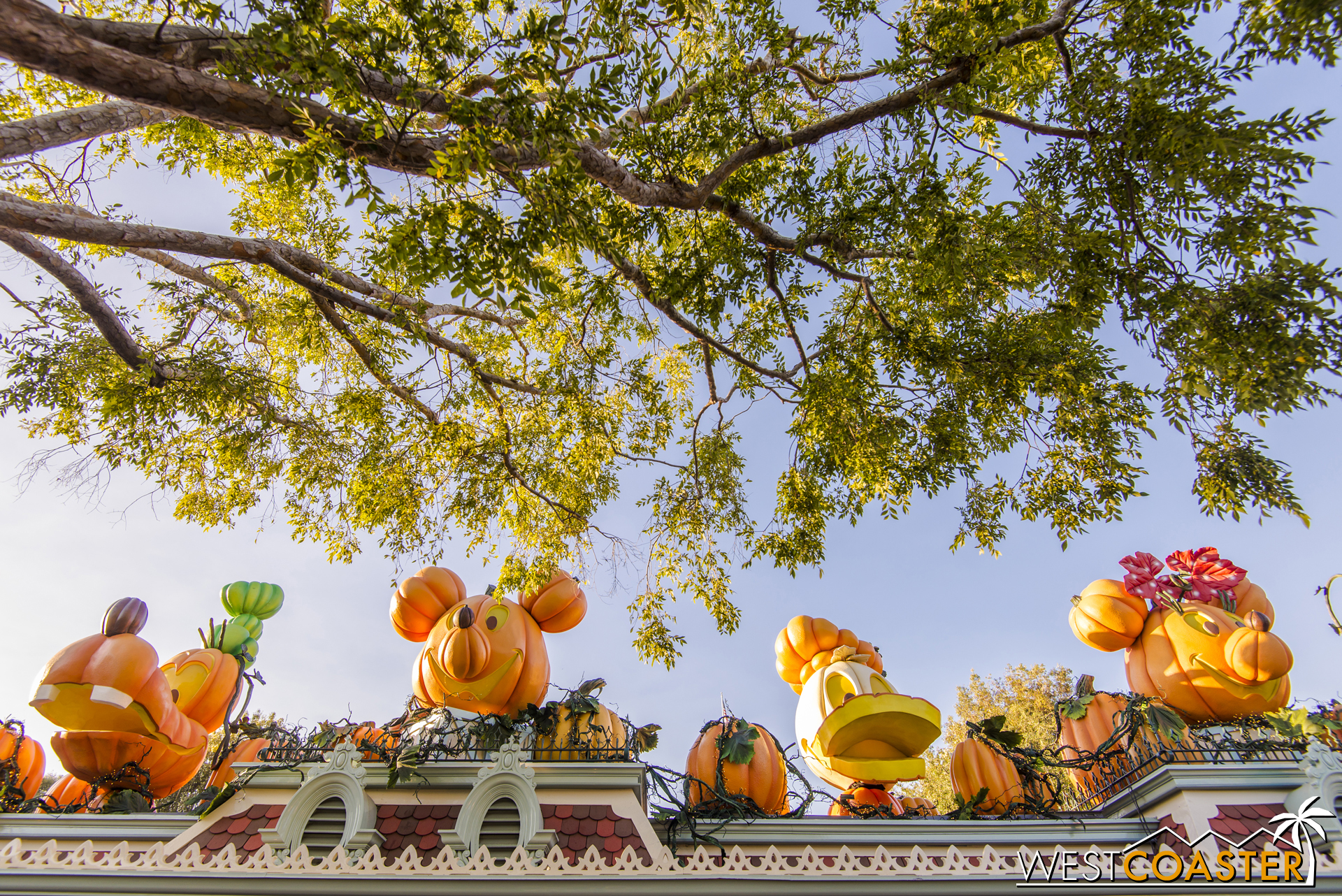 Those pumpkin Disney characters are back across the entrance gates of Disneyland Park.
