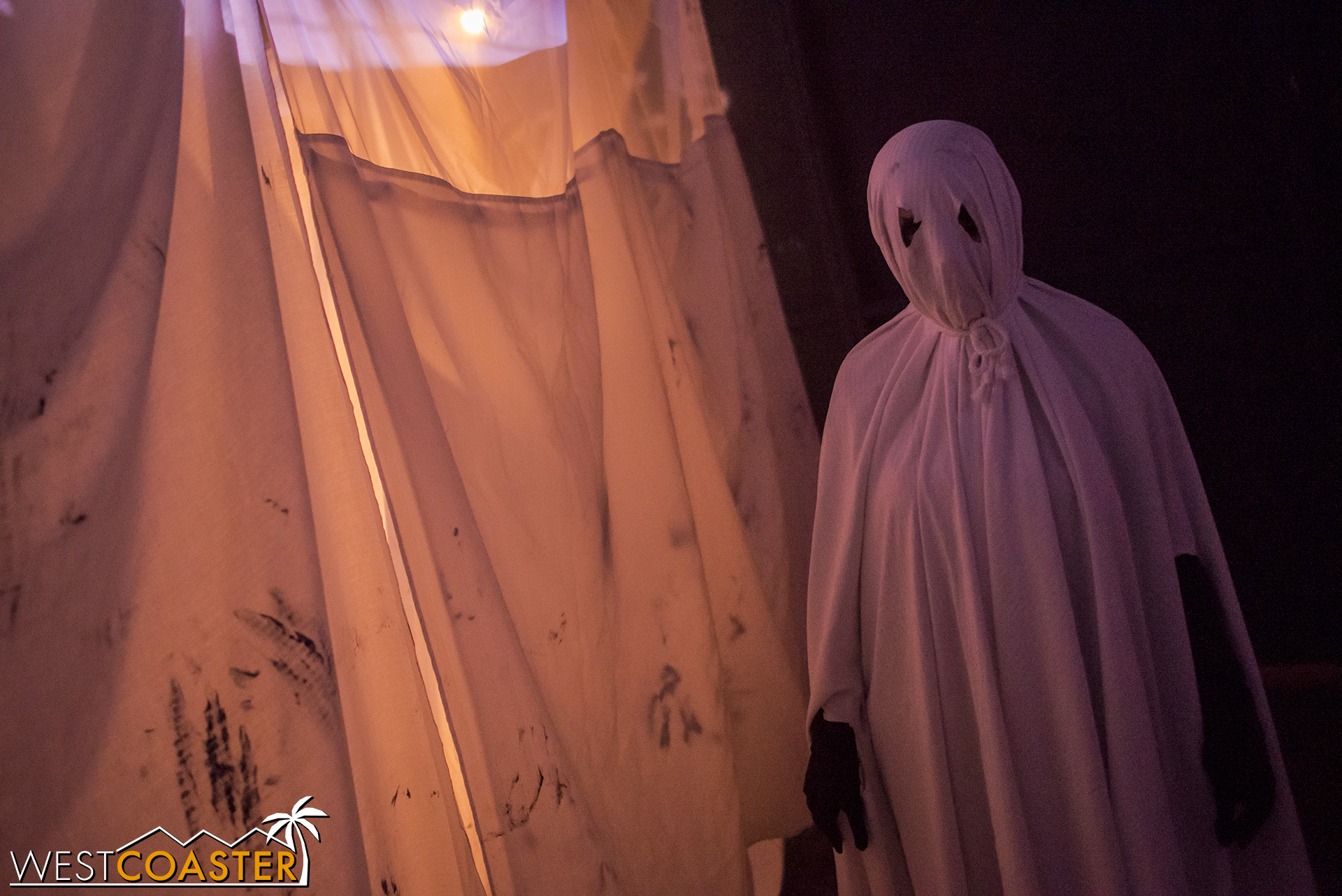 """This was kind of fun, with """"ghosts"""" flying around and startling guests."""