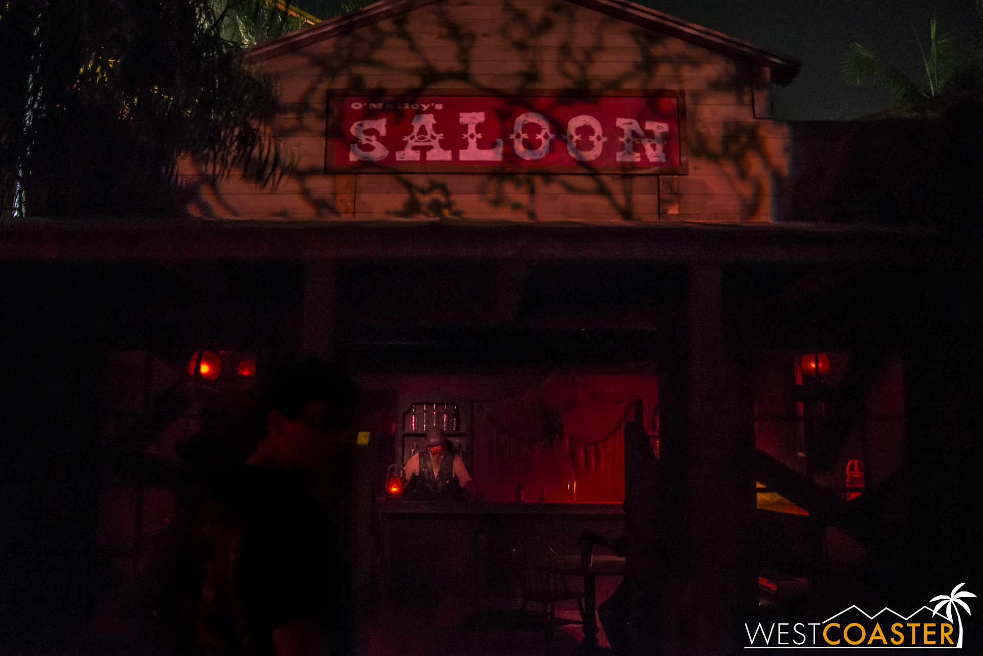 The lairs are dark and hard to photograph, so we skip over to the saloon.