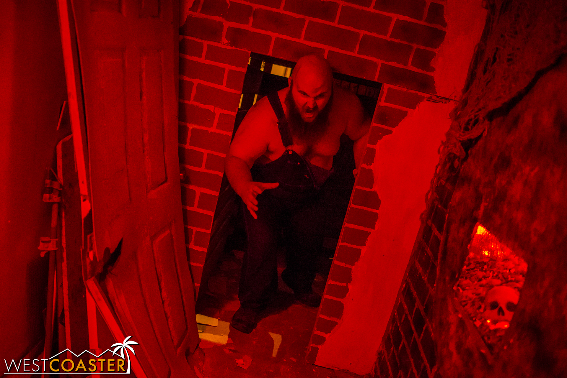 The Boiler Room provided a close encounter with one of the Higgins children.