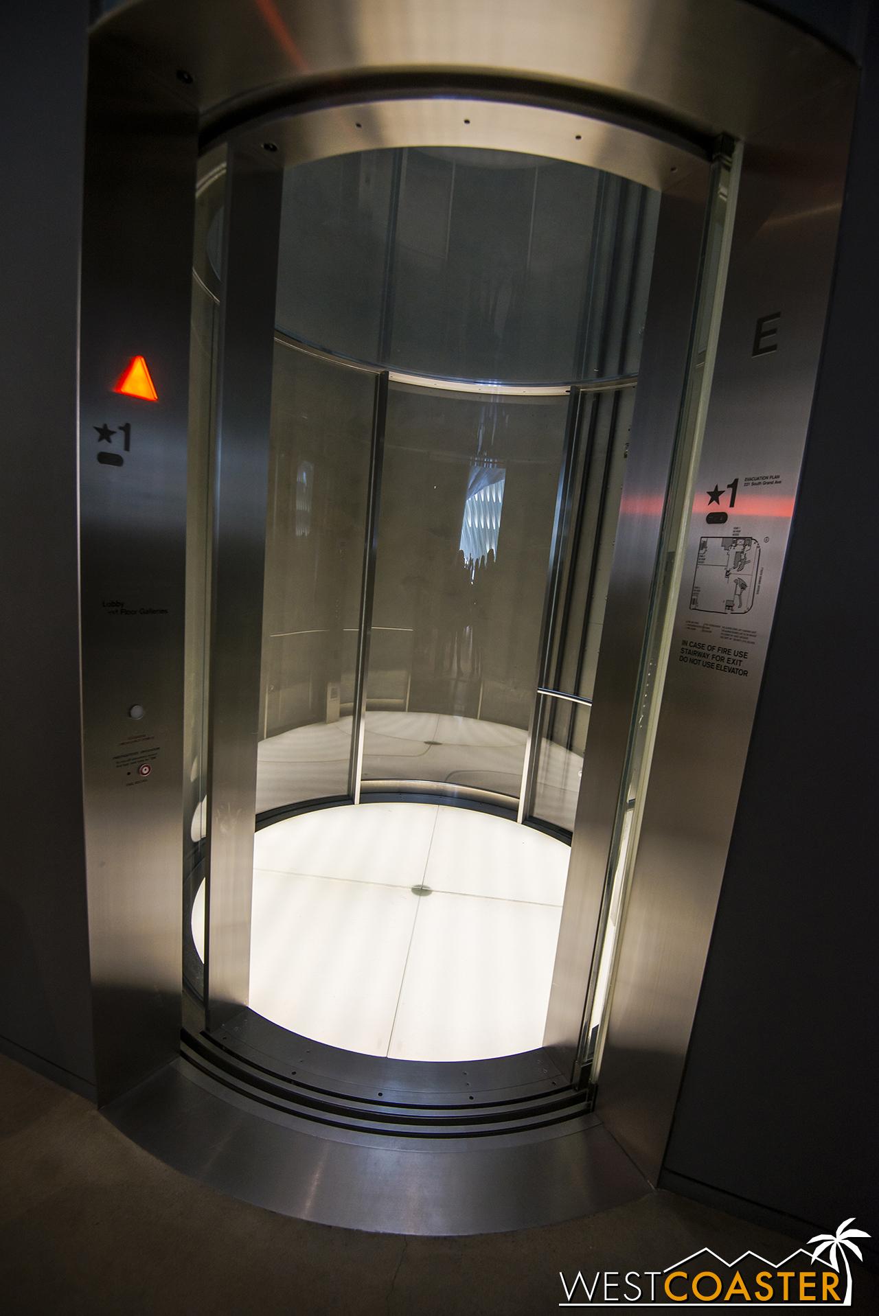 The sleek, cylindrical glass elevator.