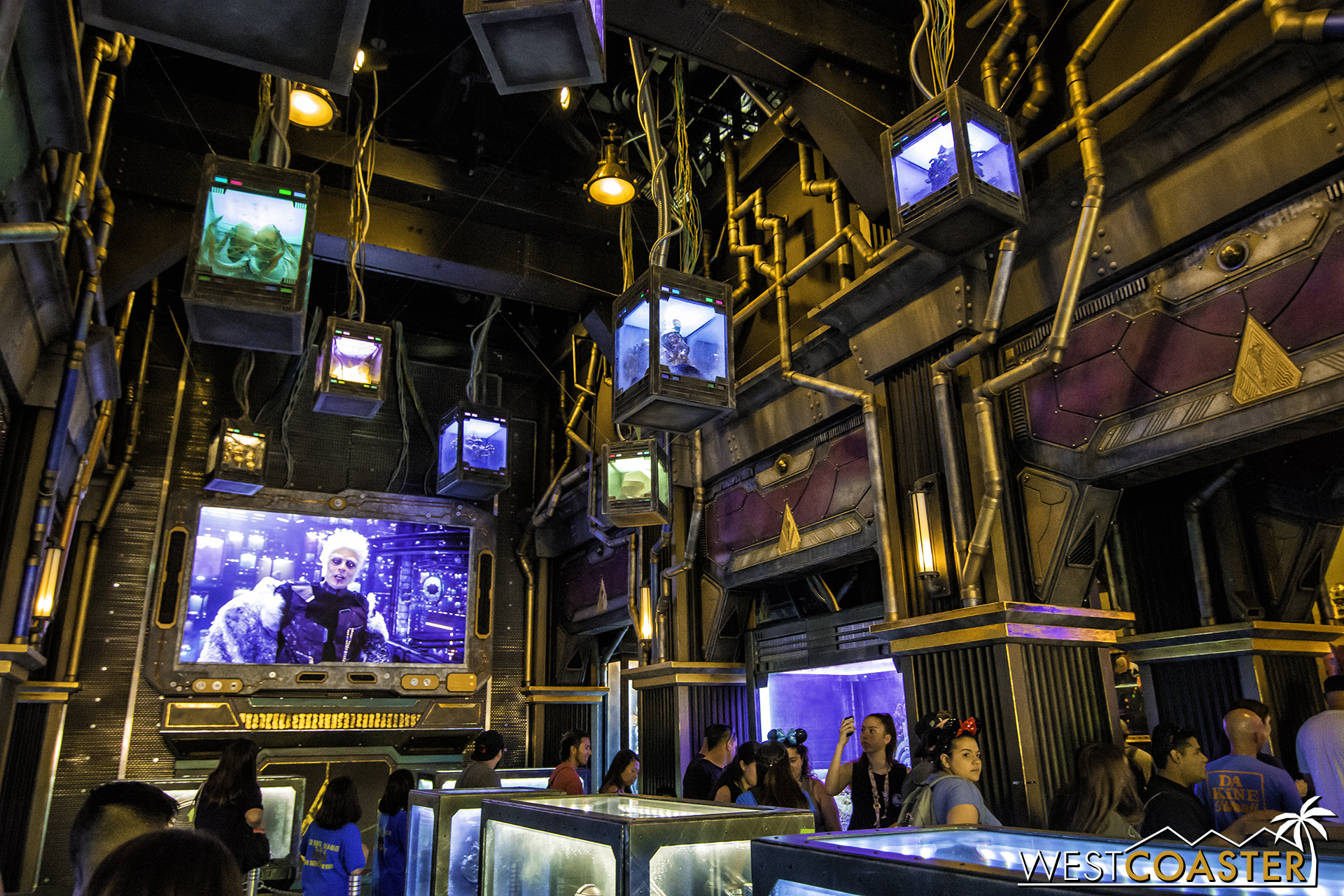 Lets take a look inside the gorgeous interior.  (Photo courtesy of Brandon Joseph of   DizFeed  .)