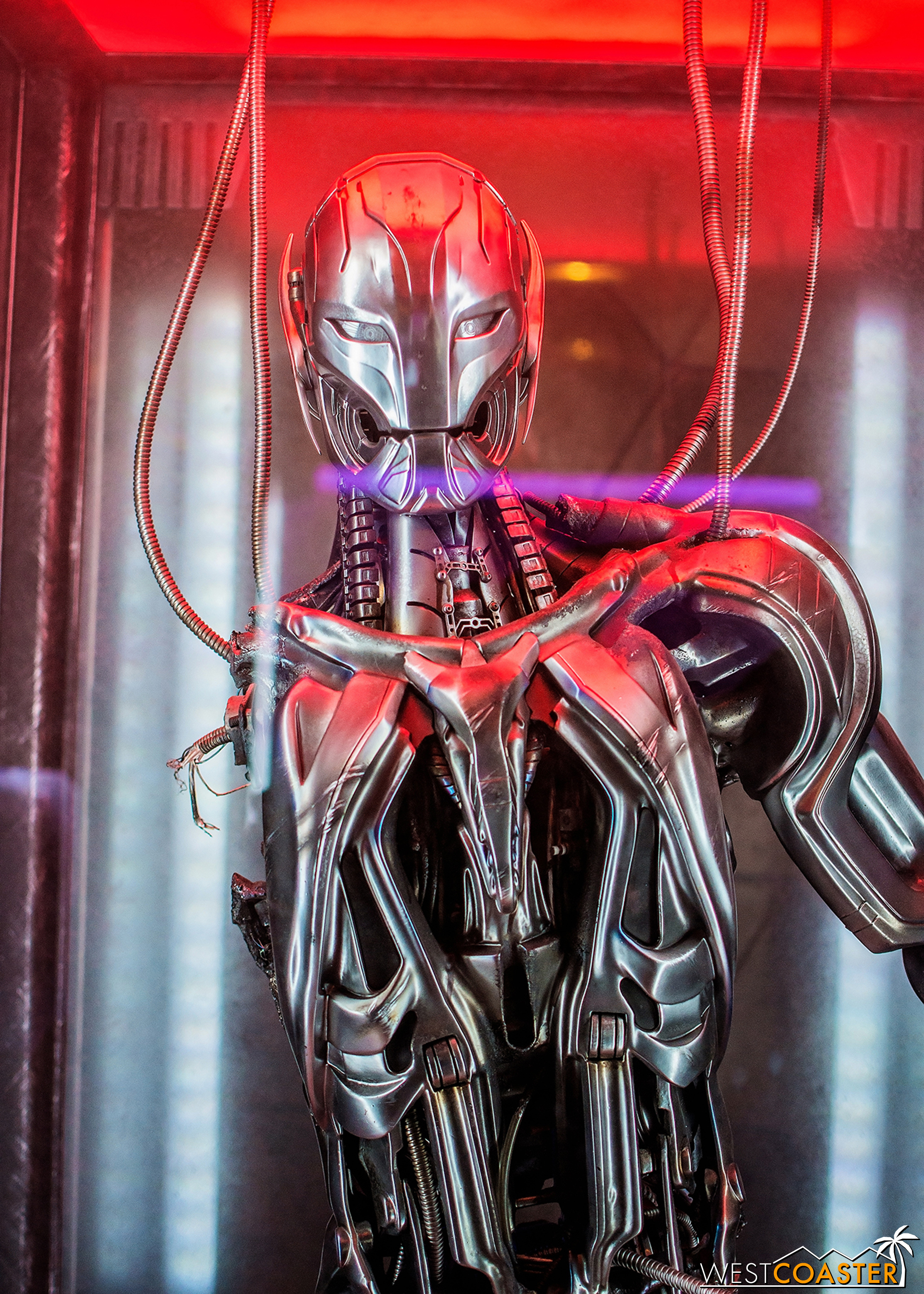 An Ultron sentry, for one.  (Photo courtesy of Brandon Joseph of   DizFeed  .)