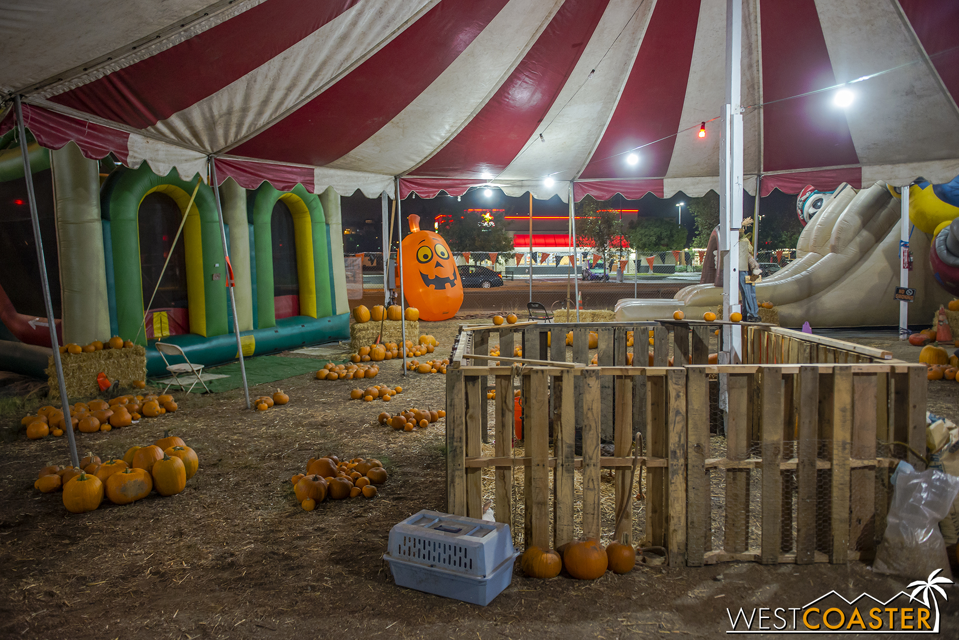 The Fleshyard is formally outfitted under Pumpkin Patch Haunt, and this shows why the name was chosen.
