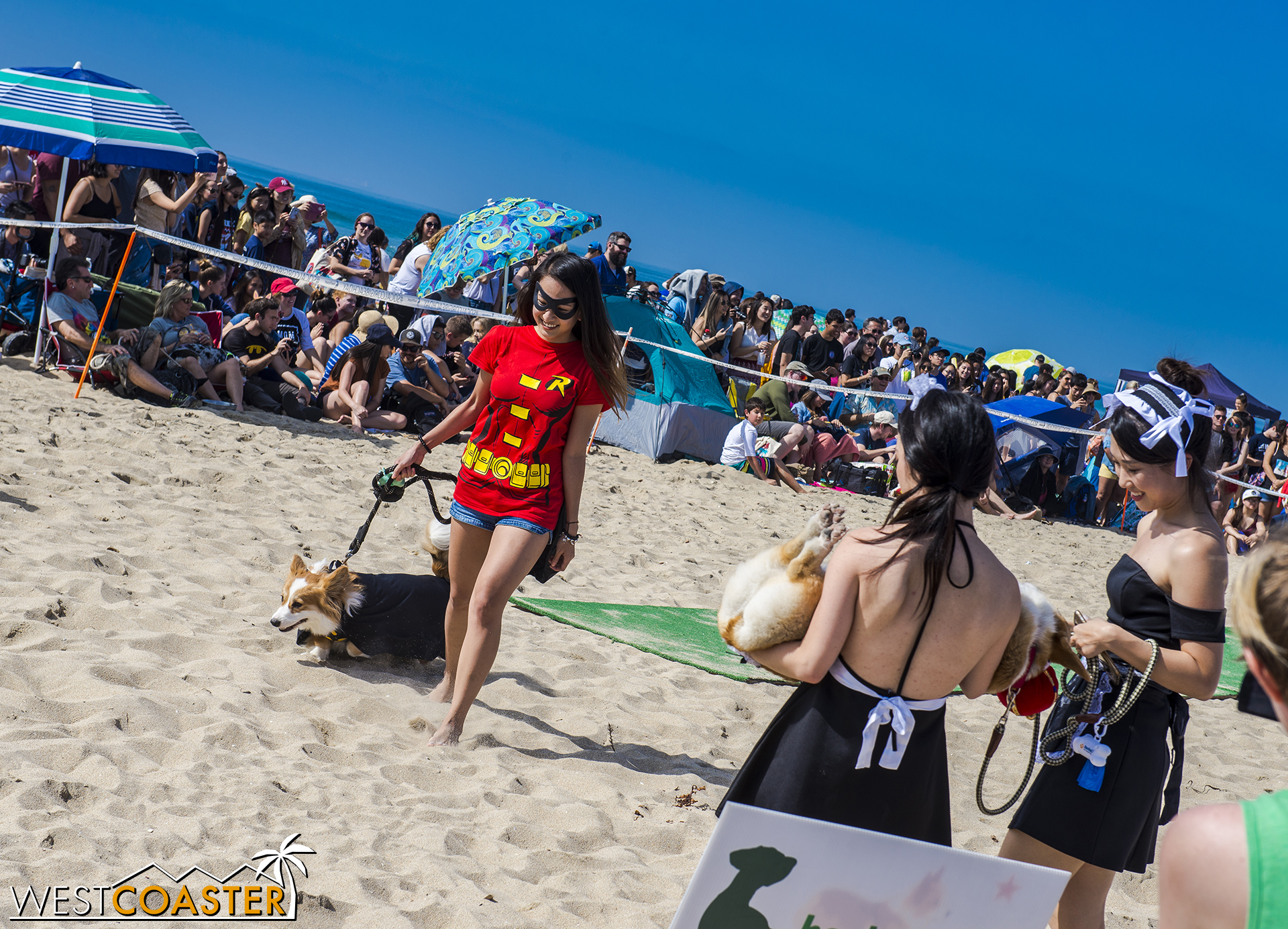 Owners paraded their dogs through the Corgi Halloween Costume Contest.