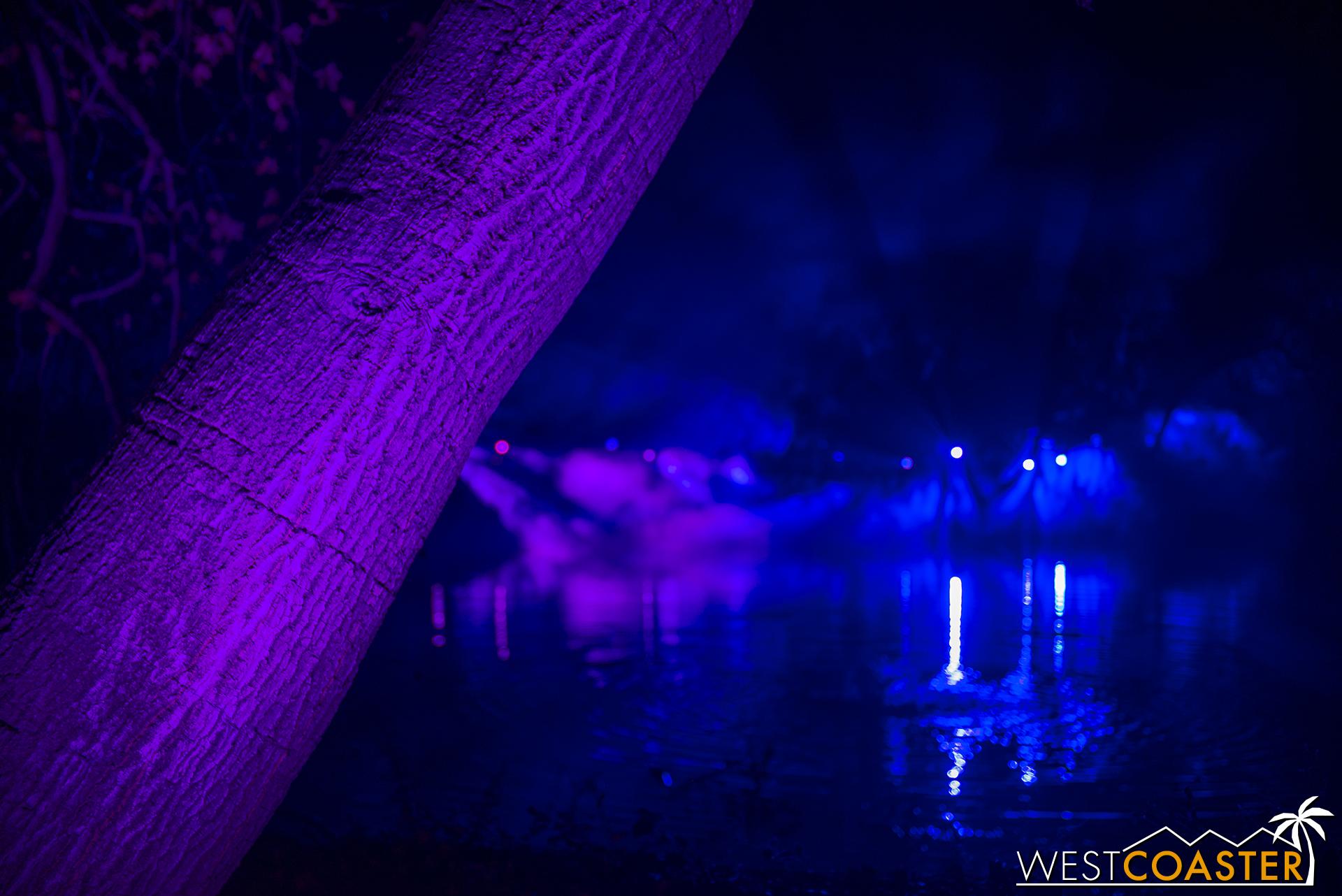 Descanso-17_1201-04-LightwaveLake-0001.jpg