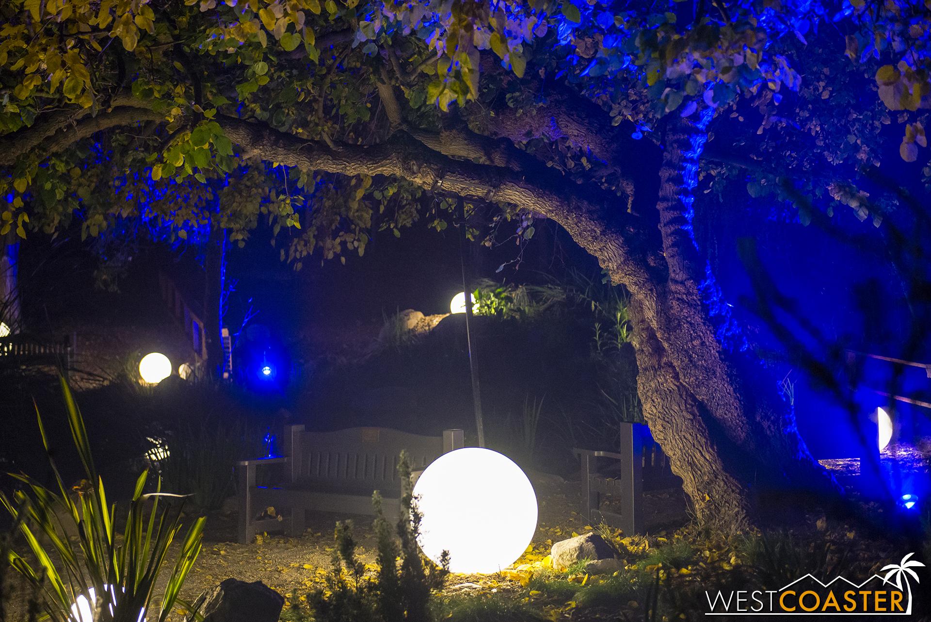 Descanso-17_1201-04-LightwaveLake-0008.jpg