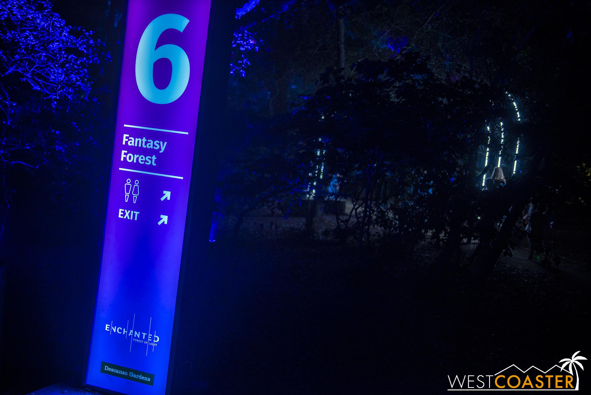 Descanso-17_1201-06-FantasyForest-0000a.jpg