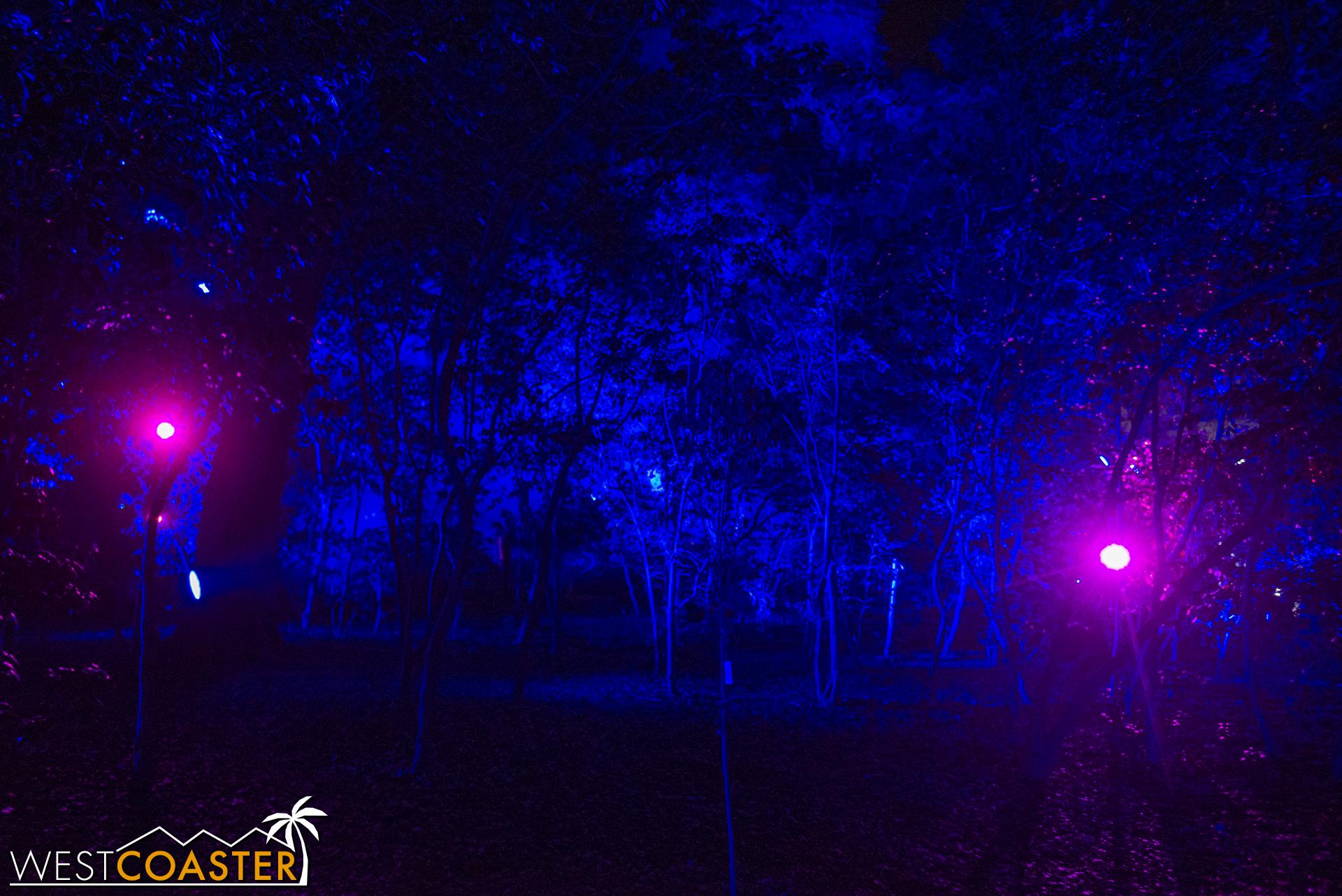 Descanso-17_1201-06-FantasyForest-0002.jpg