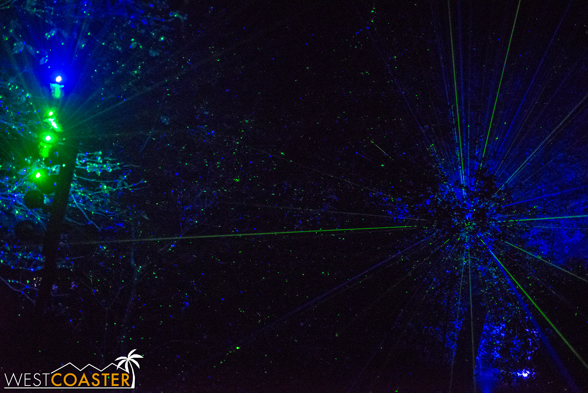 A laser firefly field cast onto the trees creates a green, starry canopy.