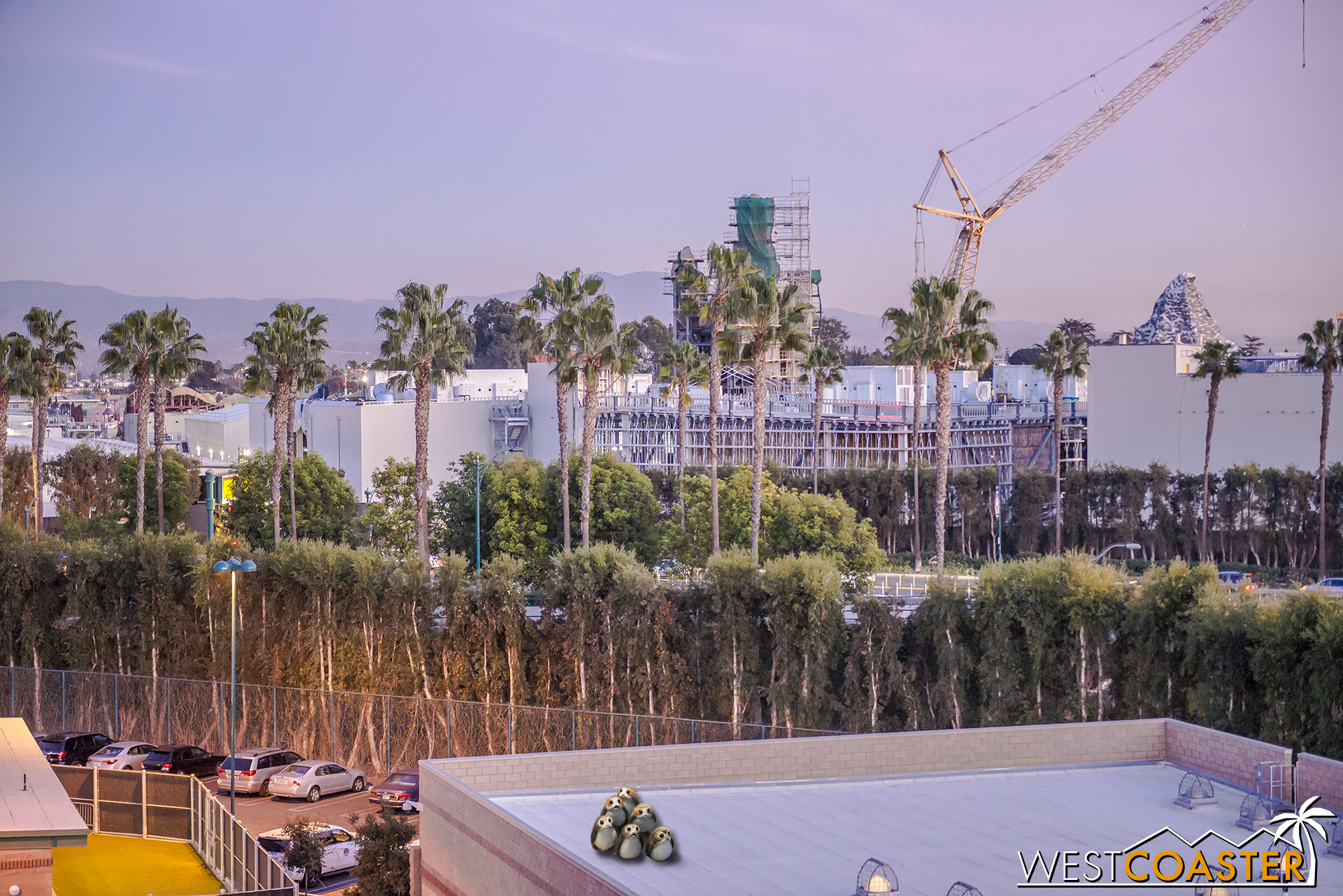 Public glimpses into Star Wars: Galaxy's Edge have definitely become limited as the walls go up and create a blank barrier into both the inside of the buildings and the land.