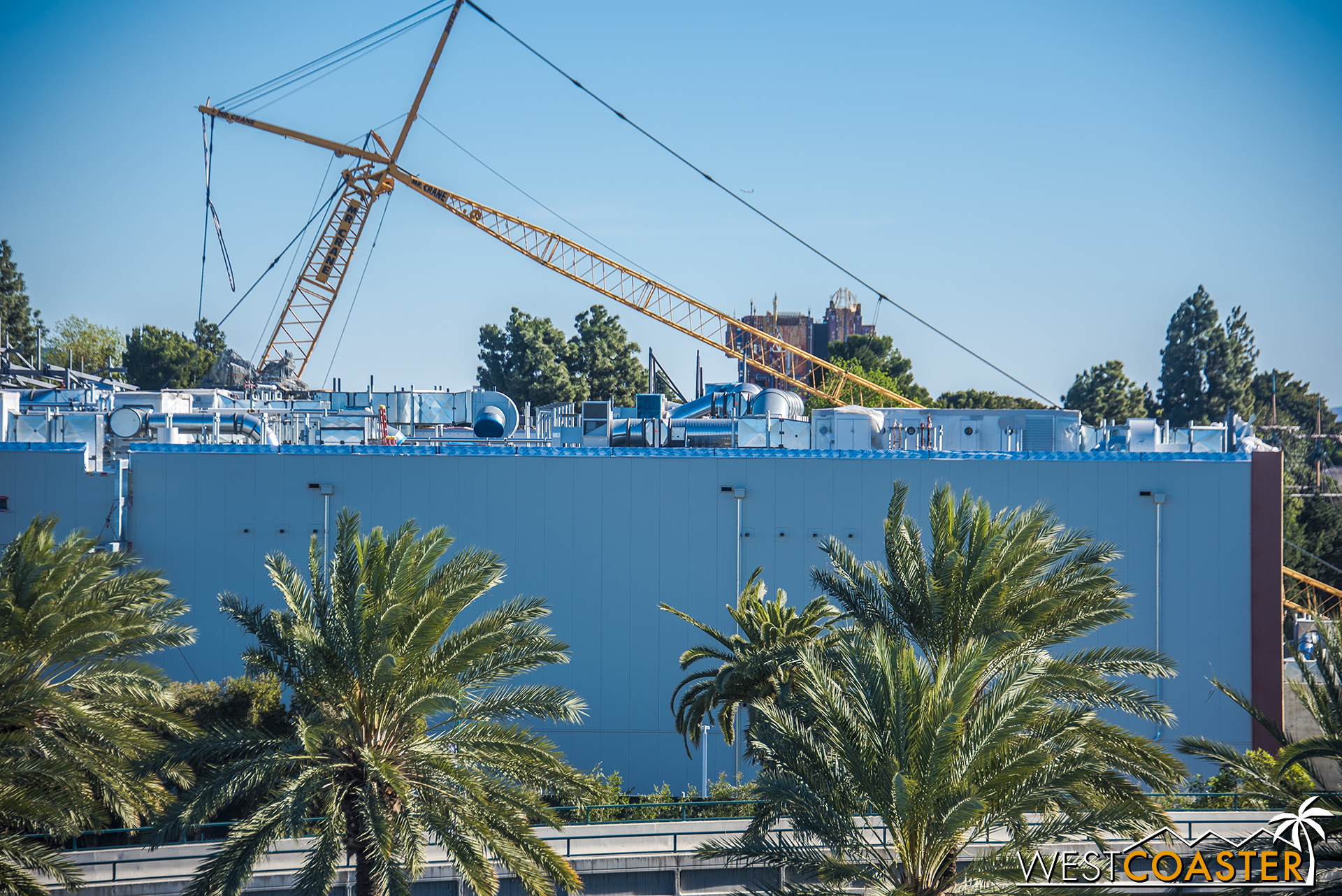 The cranes were down on Sunday, due to high winds.