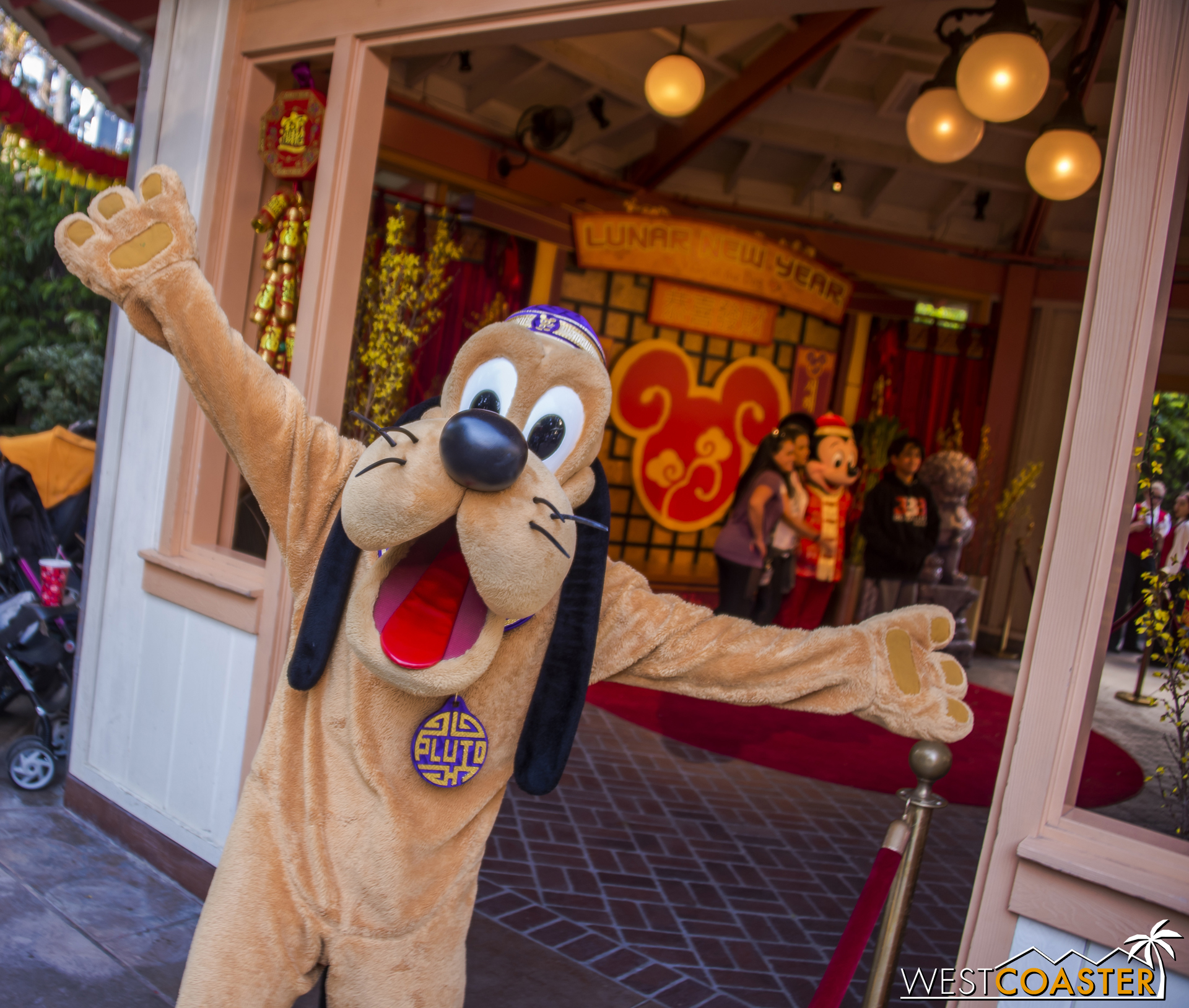 Pluto was very excited this is his year. Did I mention that already?