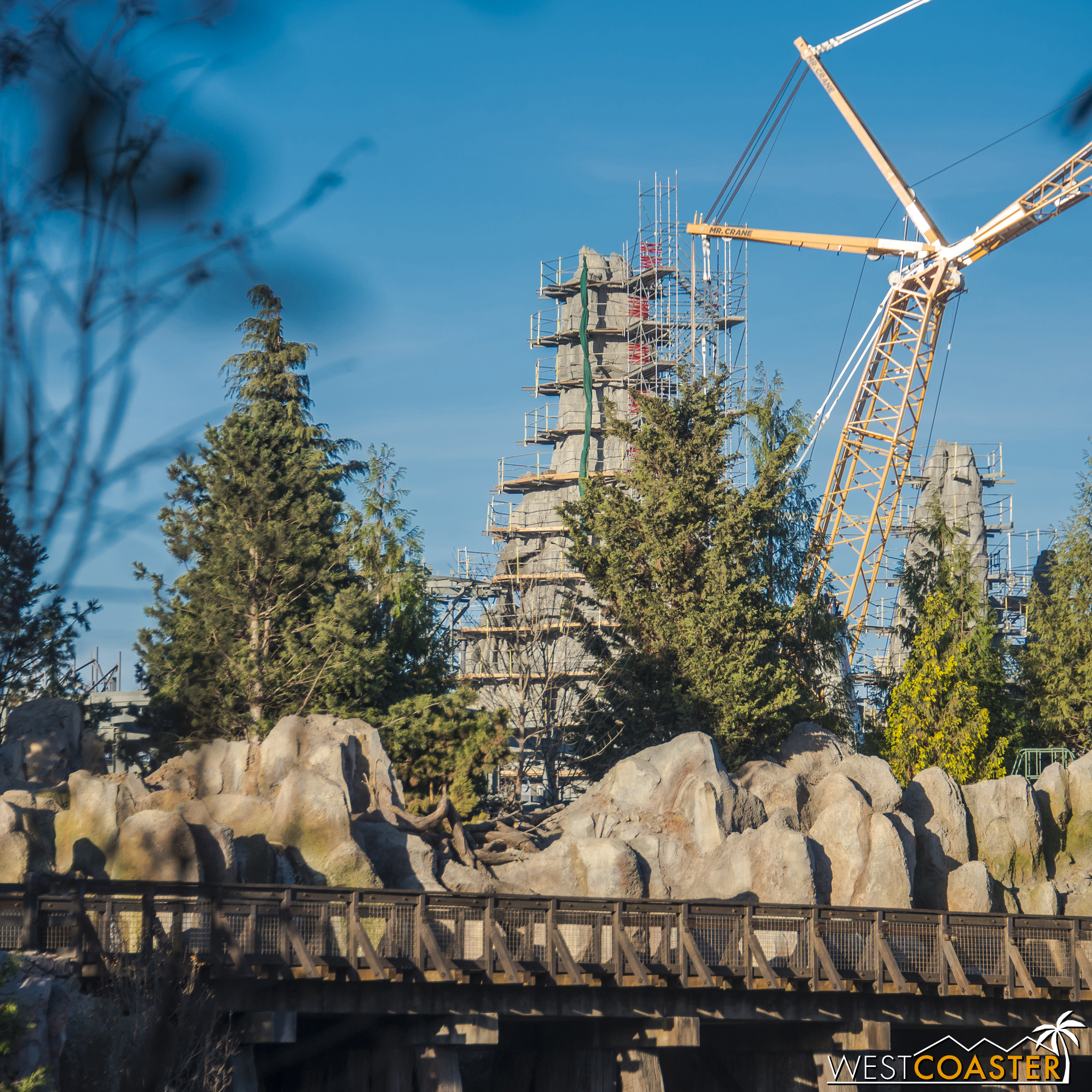 I still think they'll look quite nice and photogenic behind the Rivers of America.