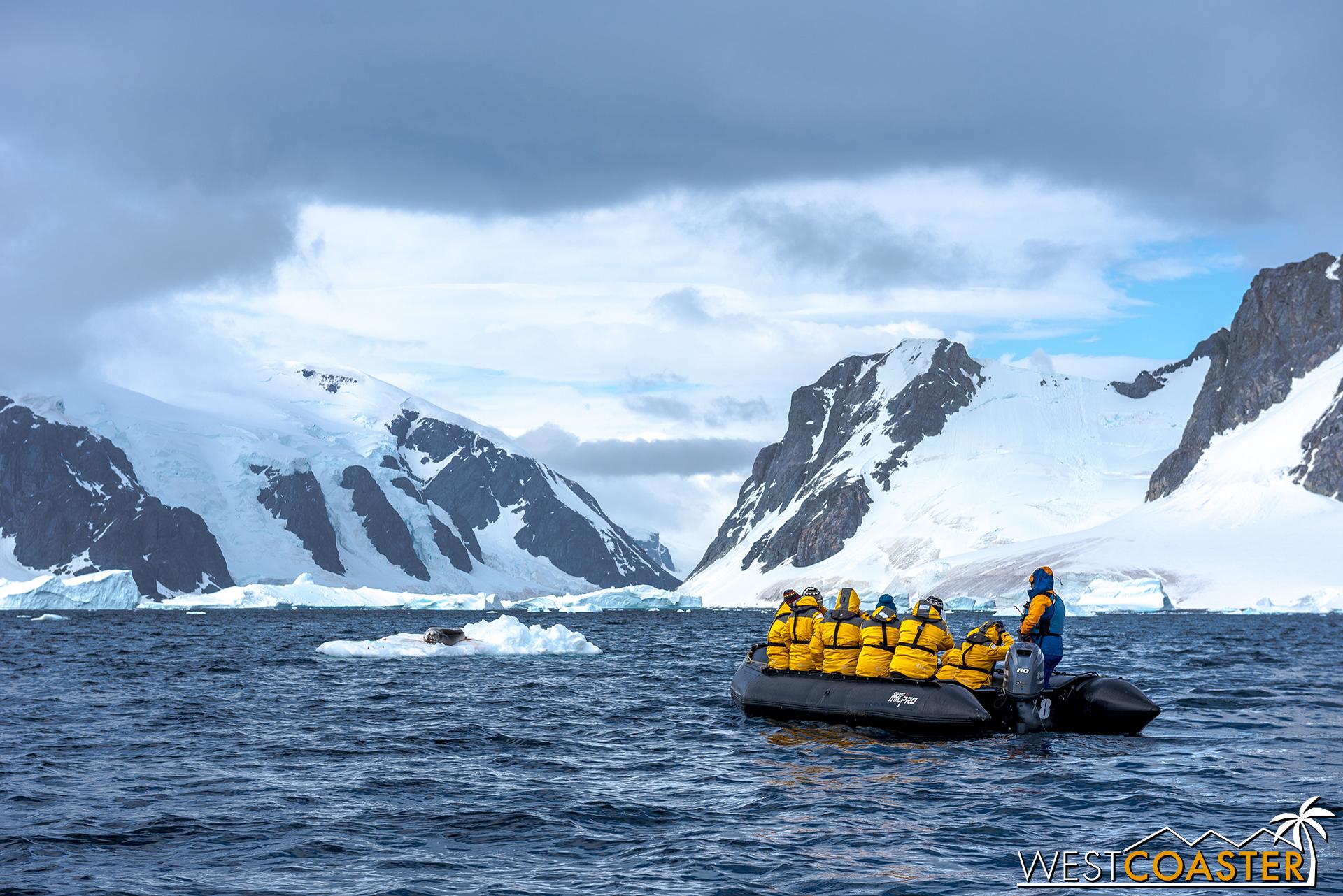 Antarctica-18_0207-0013.jpg