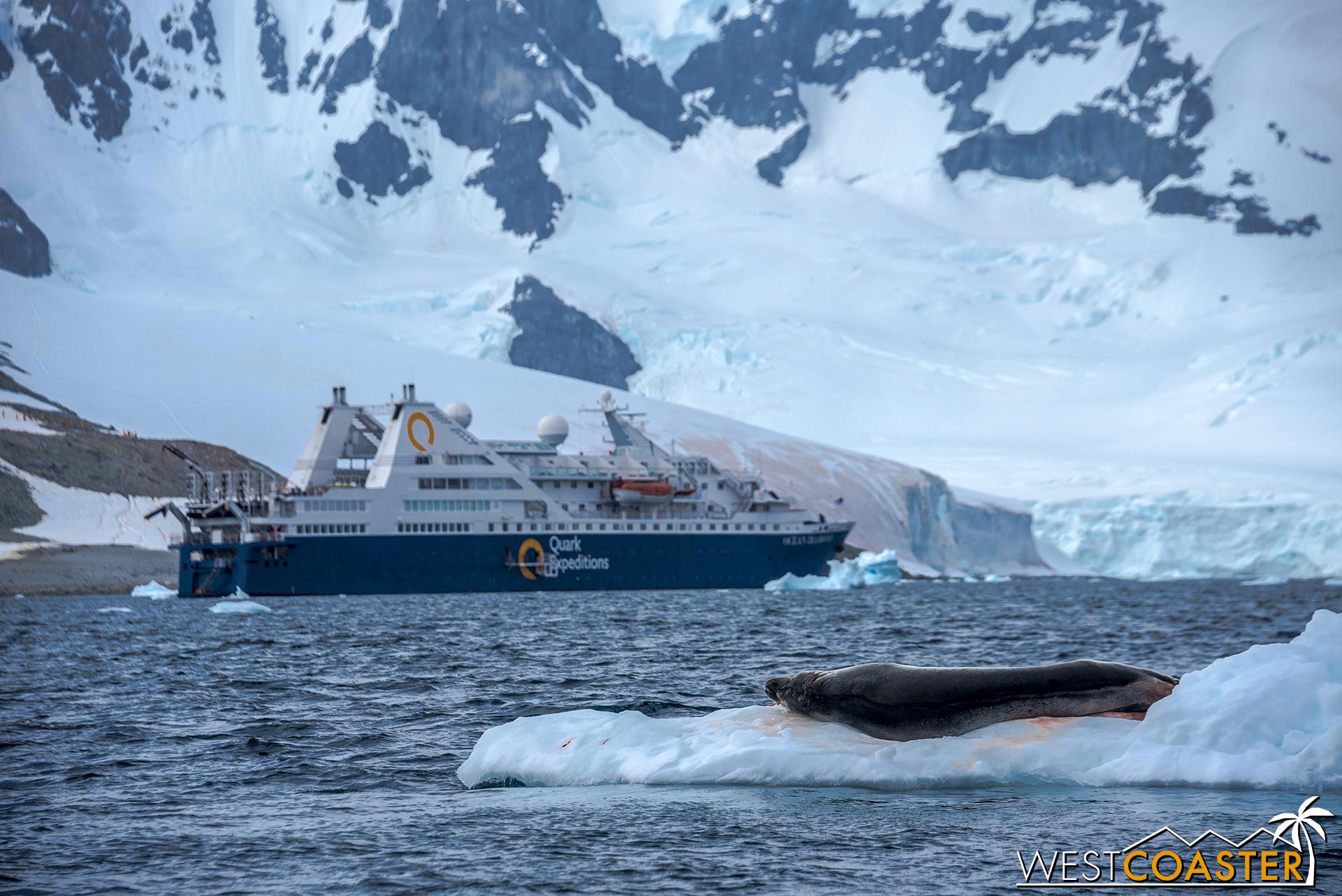 Antarctica-18_0207-0020.jpg