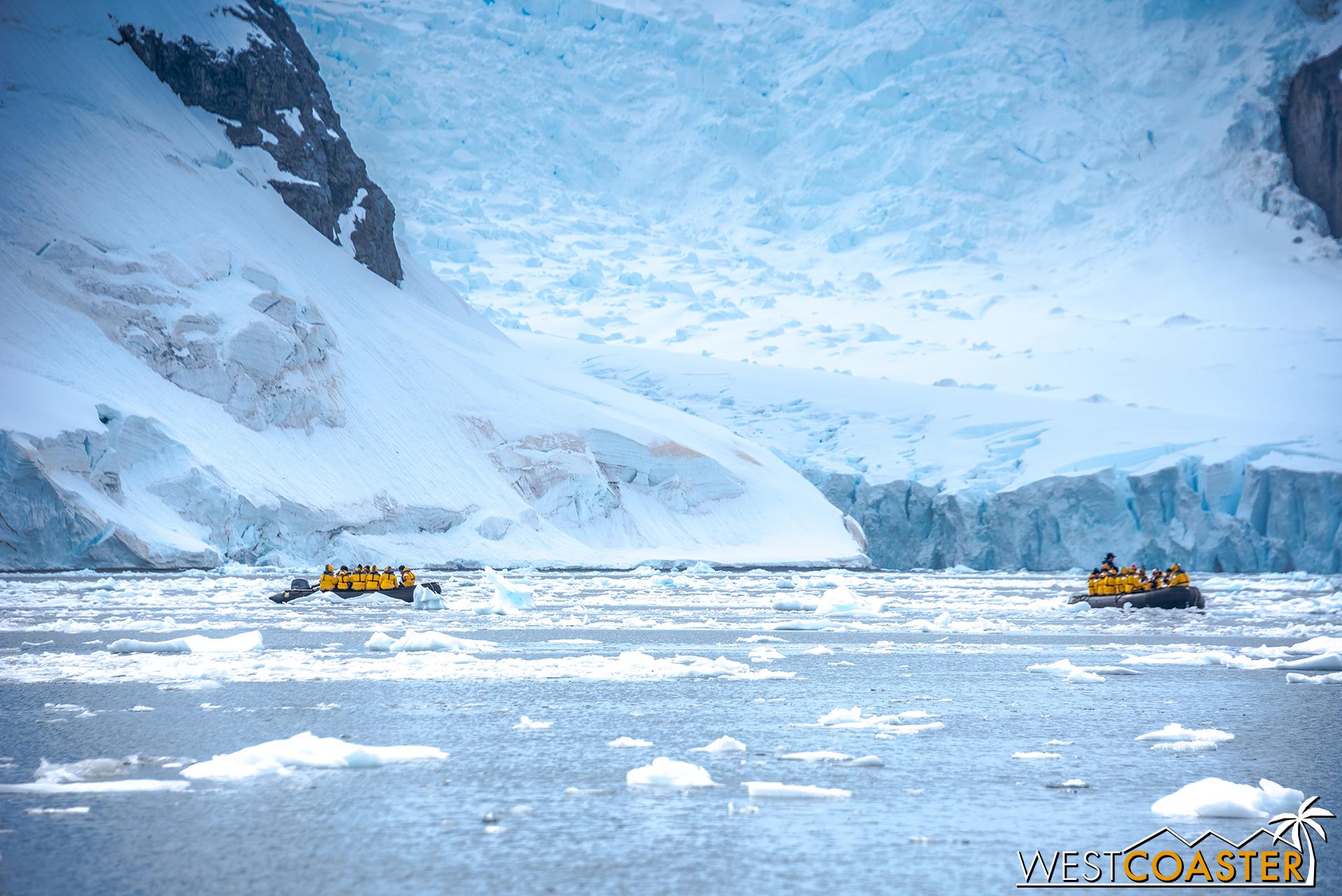 Antarctica-18_0207-0022.jpg