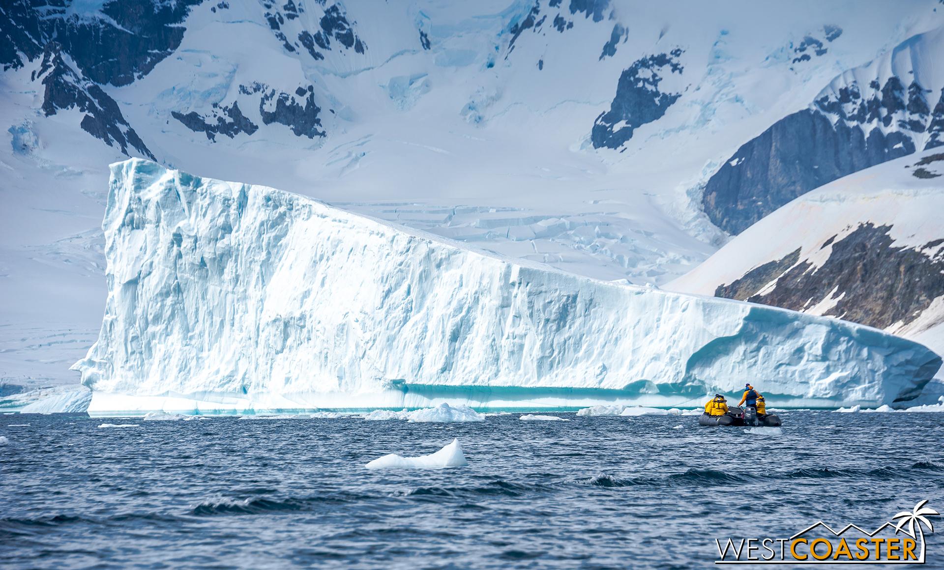 Antarctica-18_0207-0025.jpg