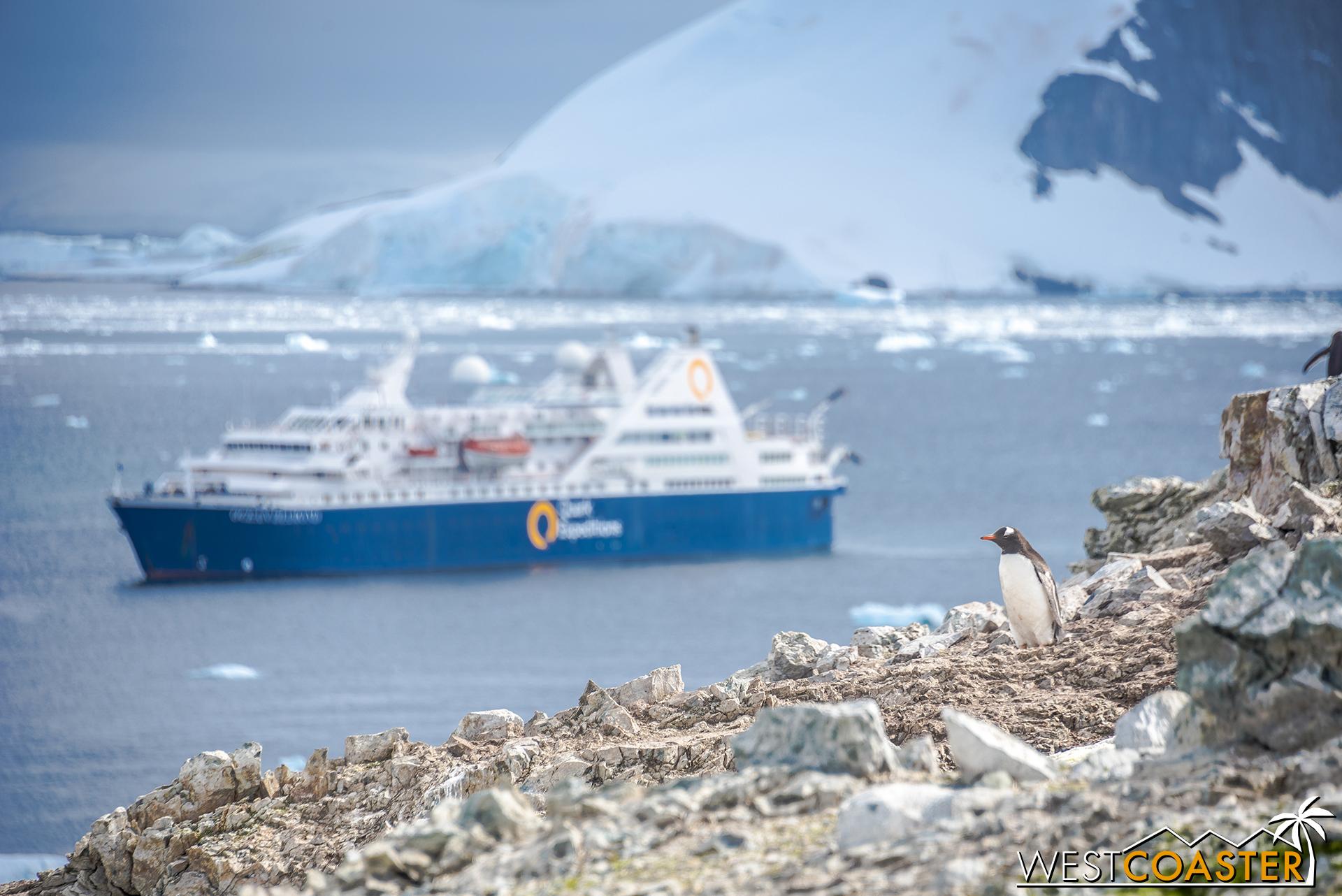 Antarctica-18_0207-0039.jpg