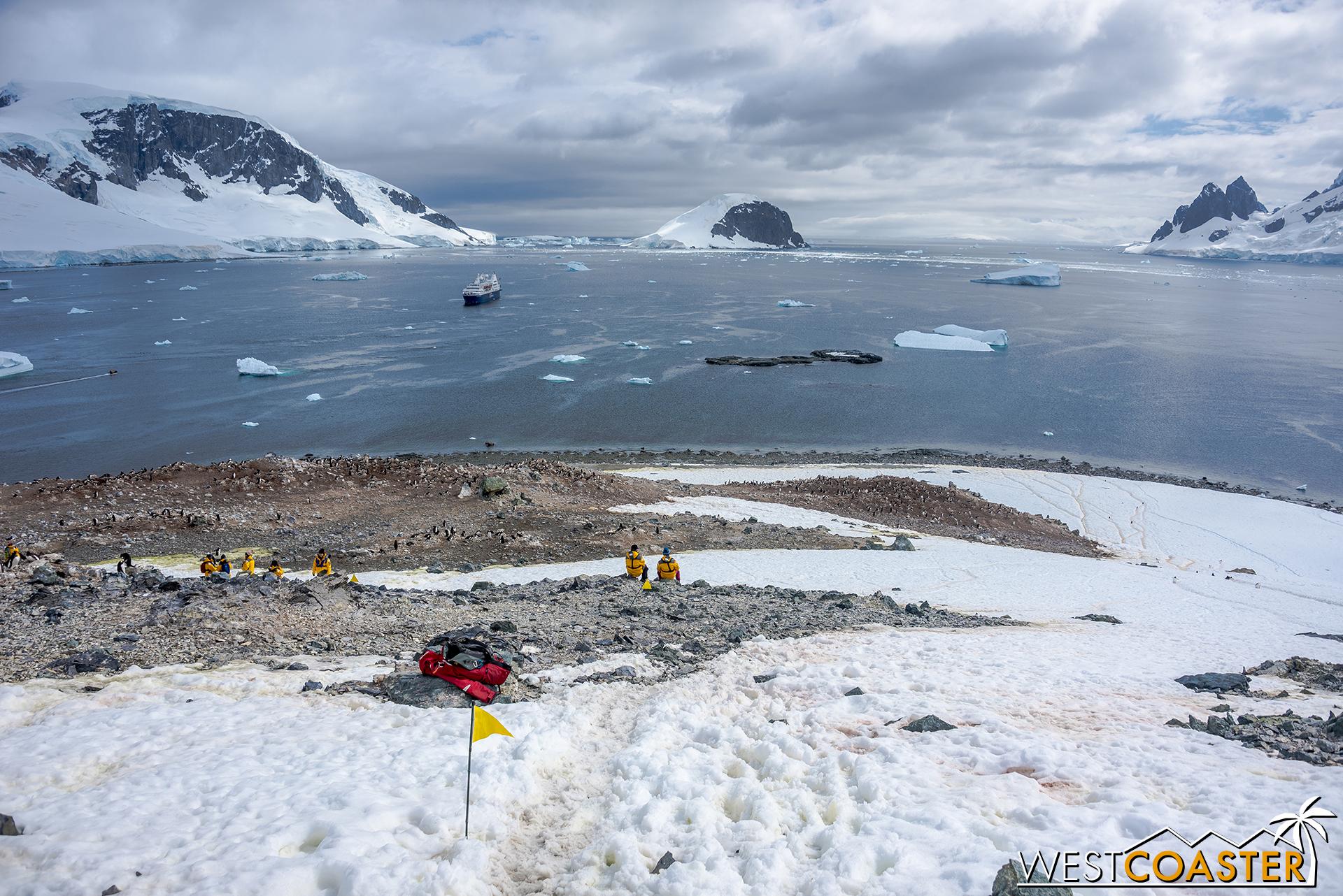 Antarctica-18_0207-0057.jpg