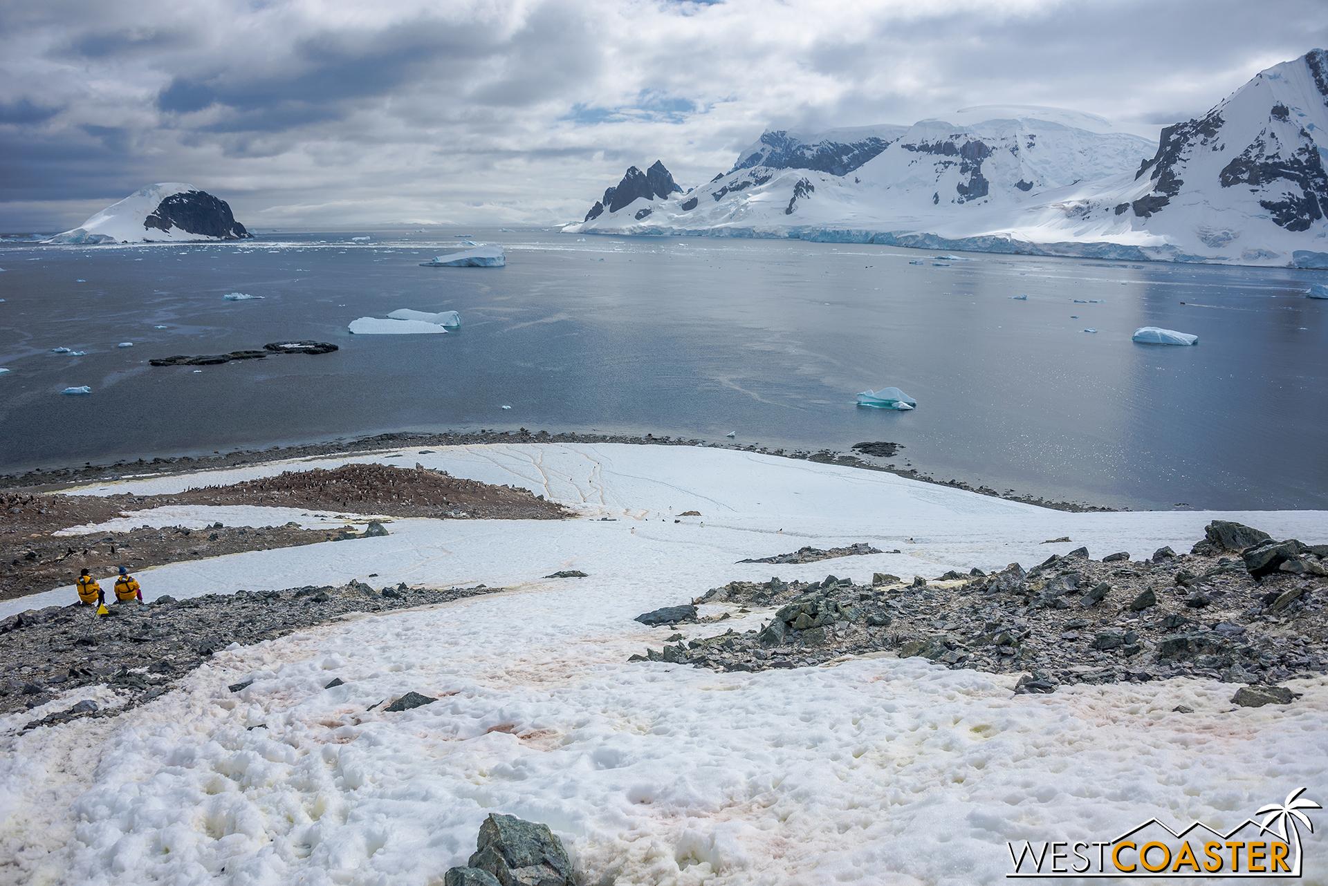 Antarctica-18_0207-0058.jpg
