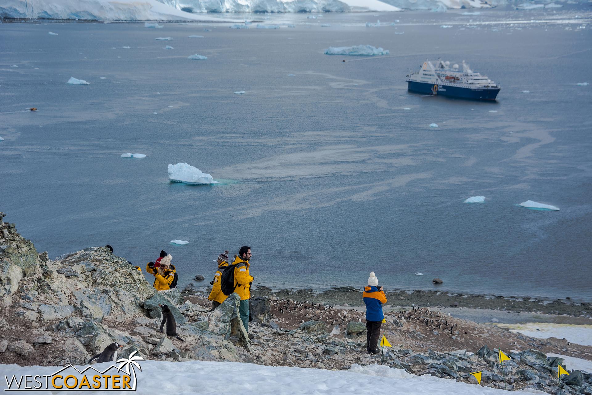Antarctica-18_0207-0062.jpg