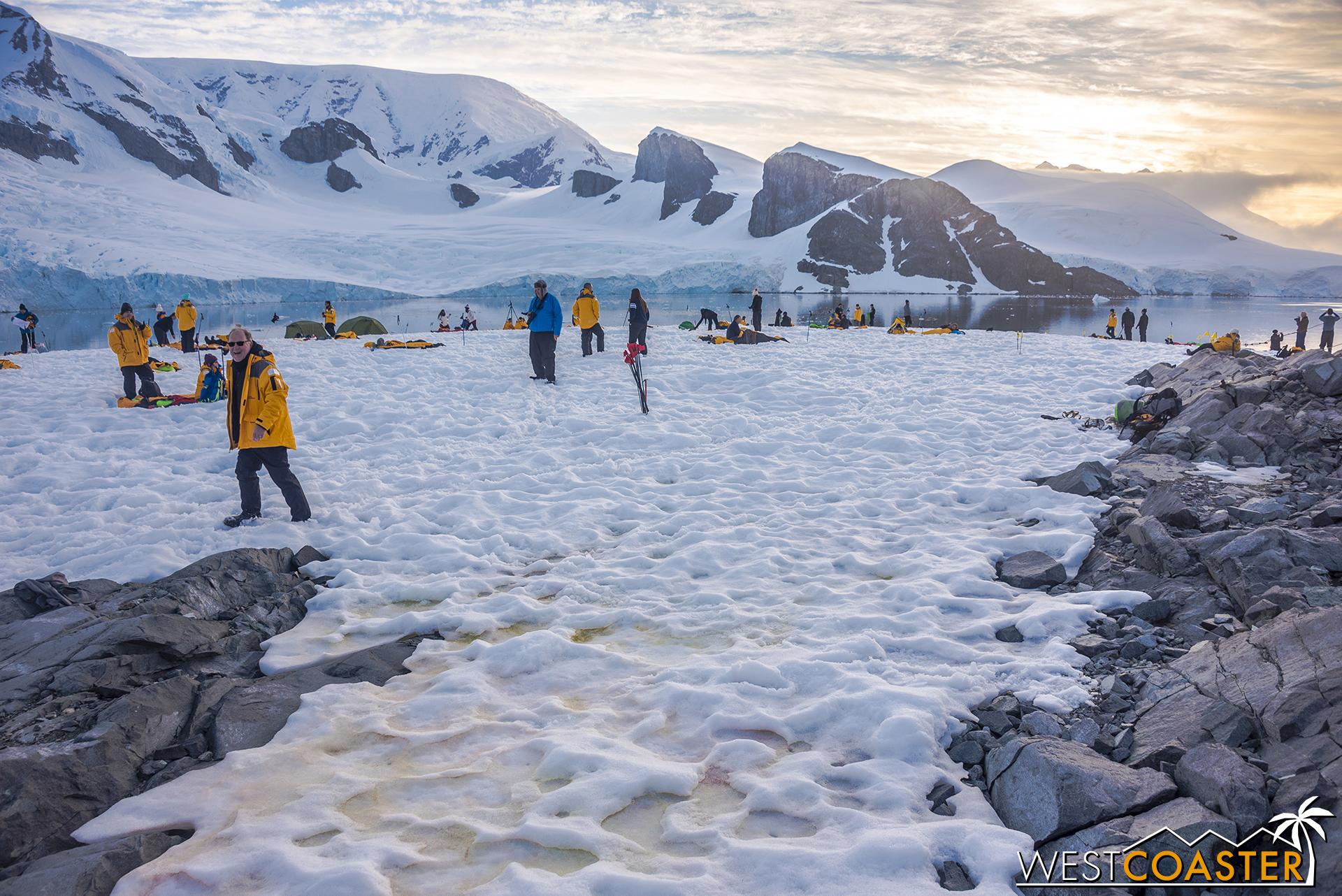 Antarctica-18_0228-0021.jpg
