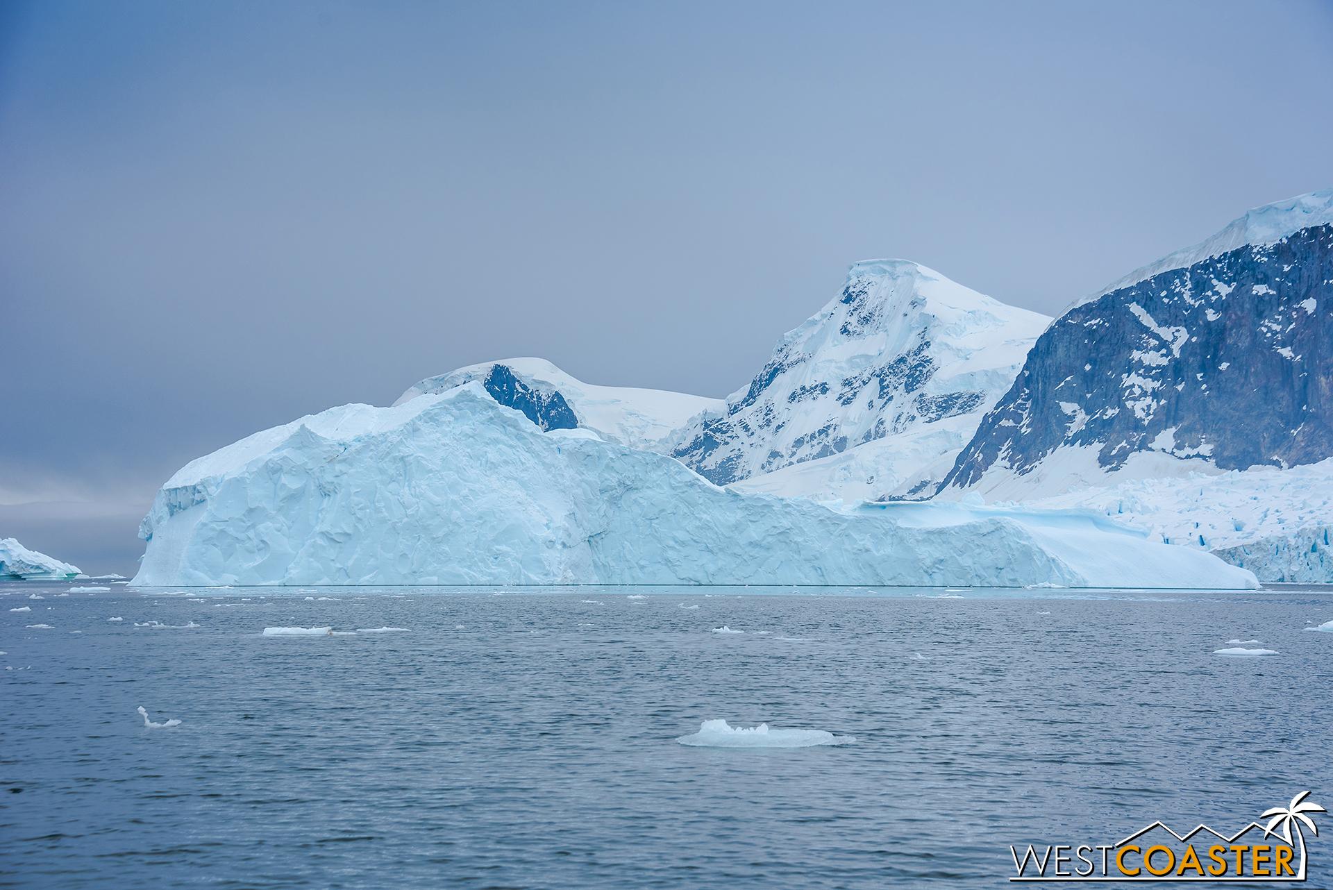 Antarctica-18_0314-0009.jpg